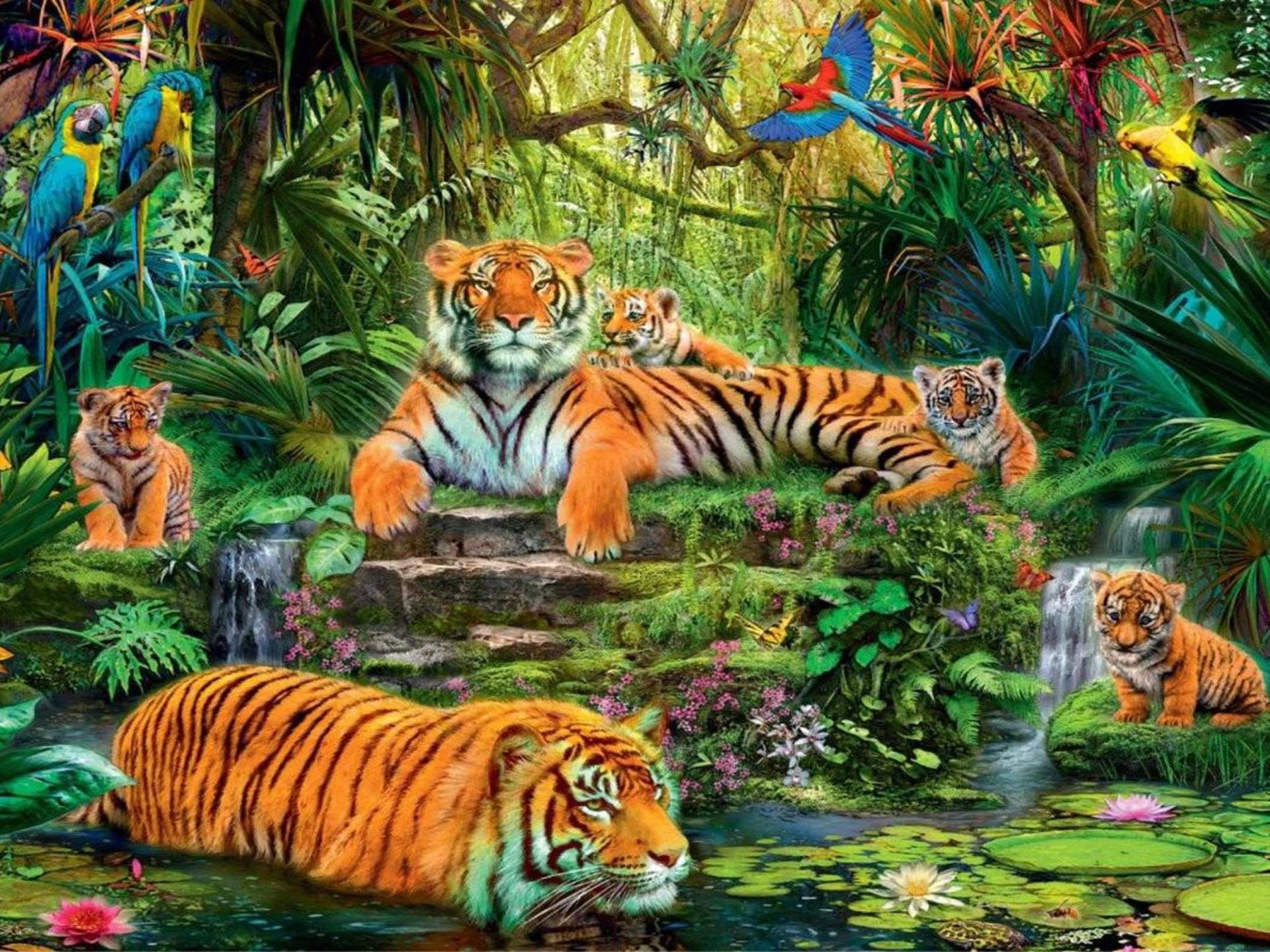 Stunning Black Wallpapers Animal Kingdom Jungle Tigers Birds Hd Wallpaper