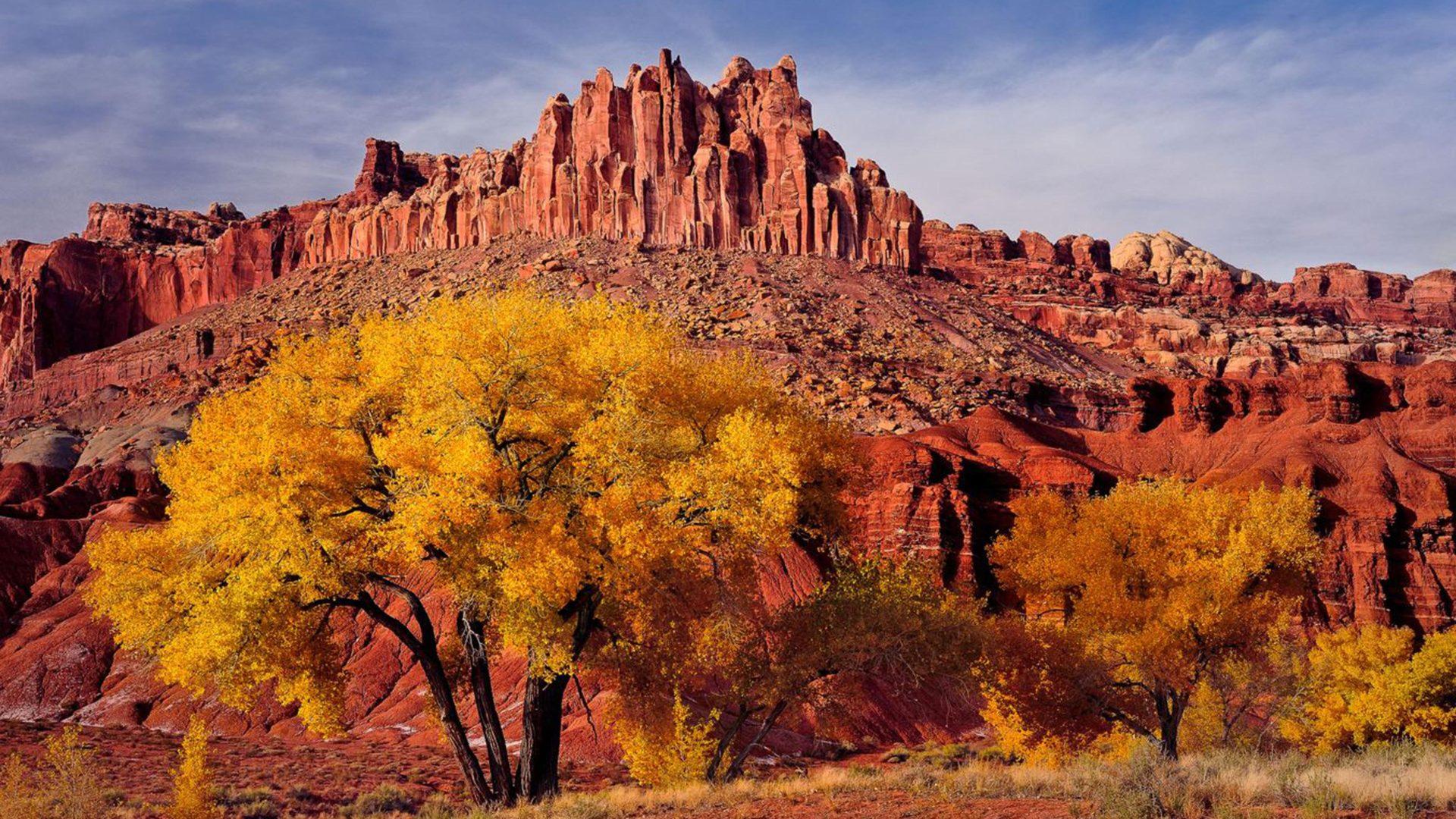 Estados Unidos Wallpaper Hd Autumn Landscape National Park In Utah Caters Usa