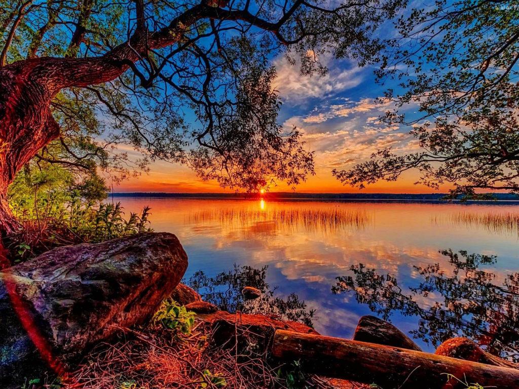 Beautiful Cars Hd Wallpapers Download Beautiful Hd Wallpaper Sunset Lake Willow Stones 84318