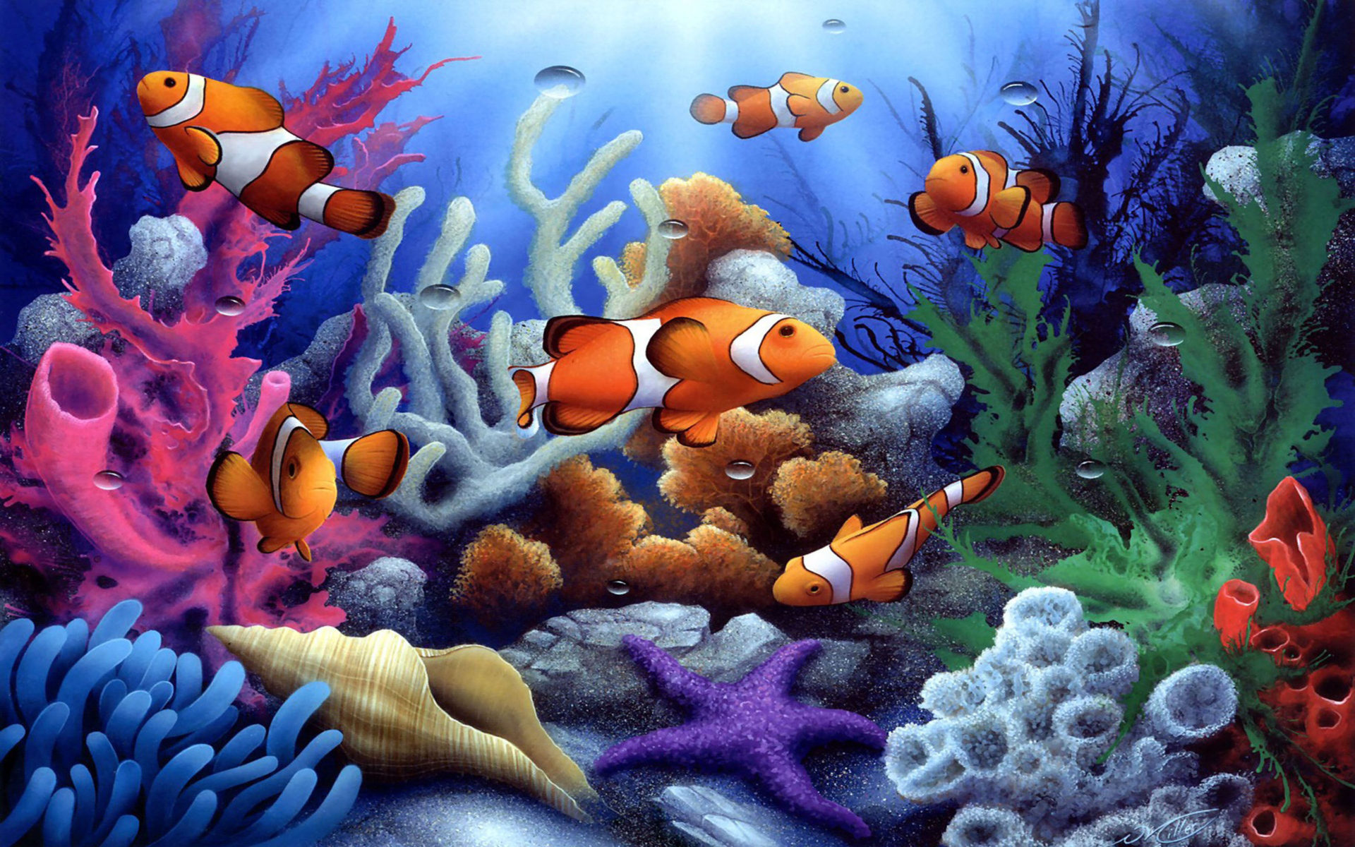3d Moving Wallpapers For Pc Free Download Colorful Underwater Coral And Fish 1600x1200