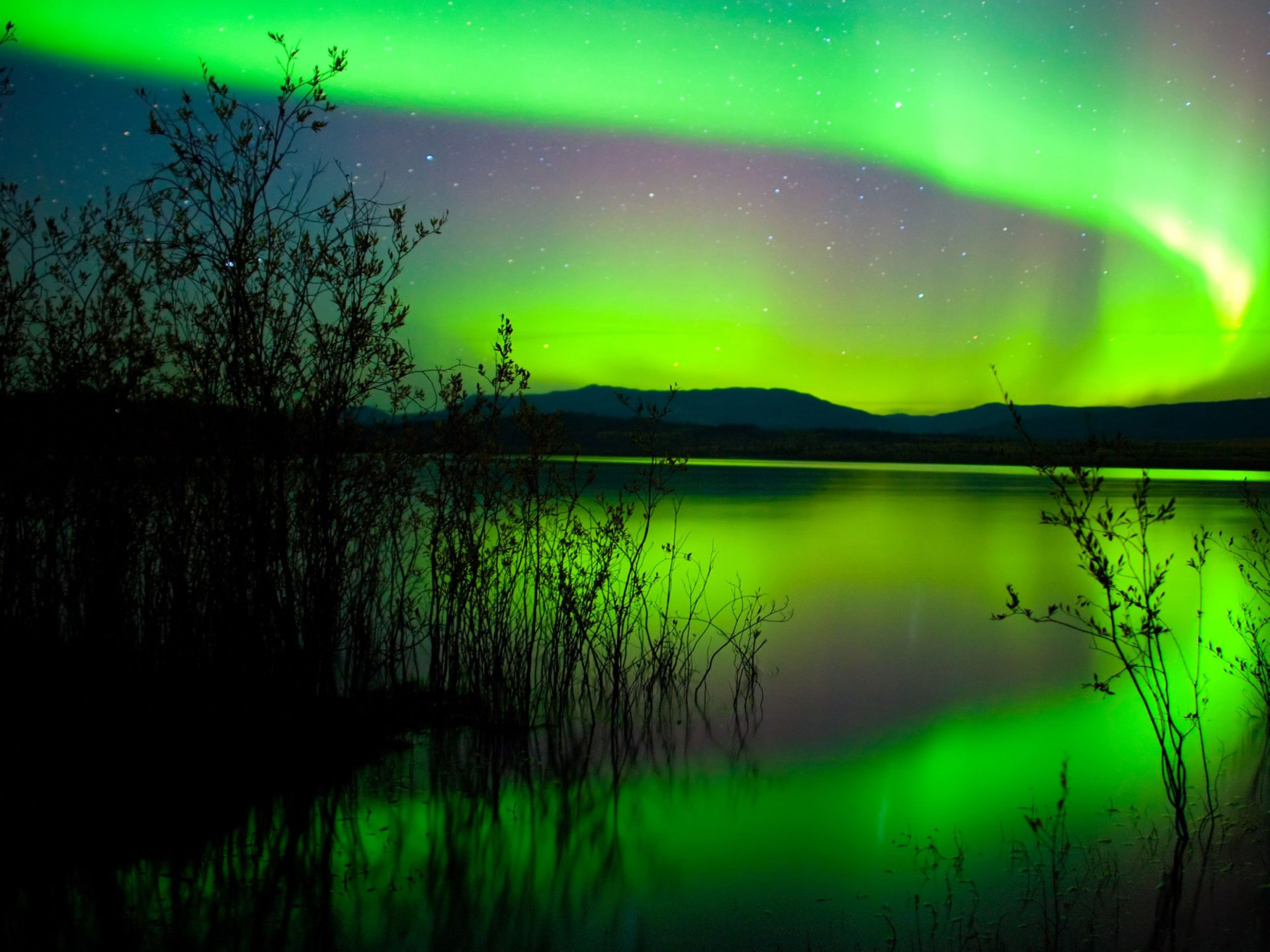 Free Wallpaper 3d Hd Green Northern Lights Canada Hd Wallpaper 1800x2880
