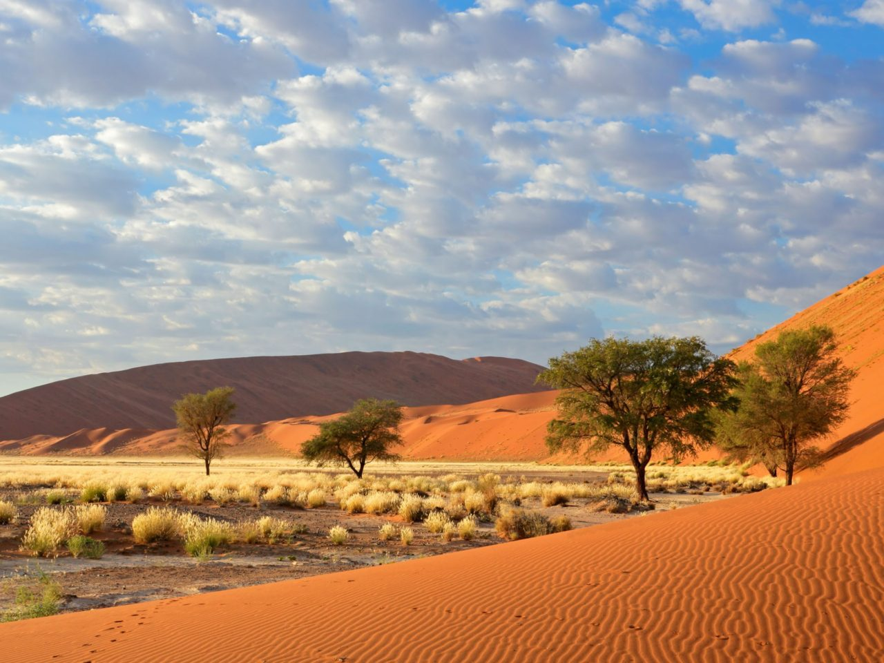 Fall Wallpapers For Tablet Sossusvlei Namib Naukluft National Park Namibia 1800x2880