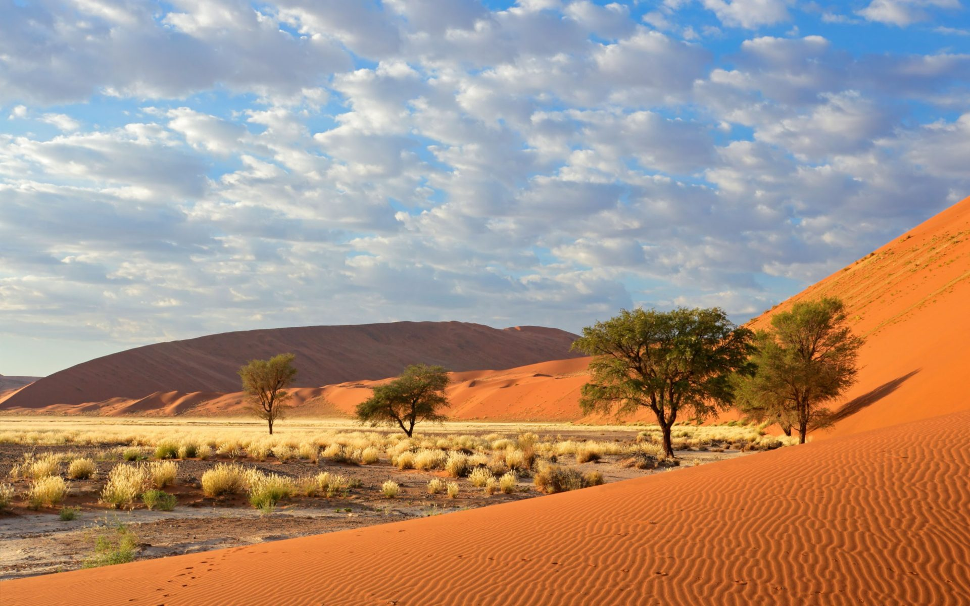 Summer Fall Desktop Wallpaper Sossusvlei Namib Naukluft National Park Namibia 1800x2880