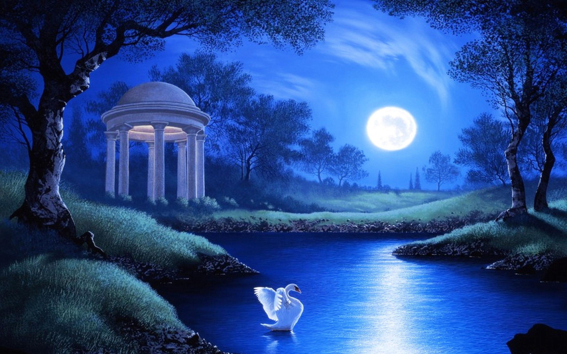 Live Pc Girl Wallpapers Swan Lake Night Full Moon Trees Grass Hd Wallpaper
