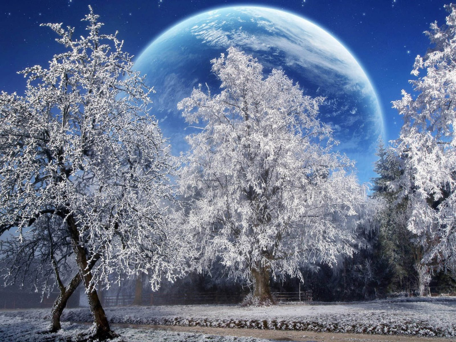 Snow Falling Wallpaper Hd Winter Snow Full Moon High Resolution Hd Wallpapers