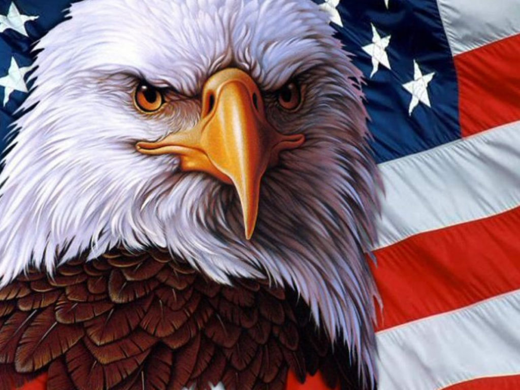 Stunning Fall Wallpapers American Eagle Symbol Usa Independence Freedom 3840x216