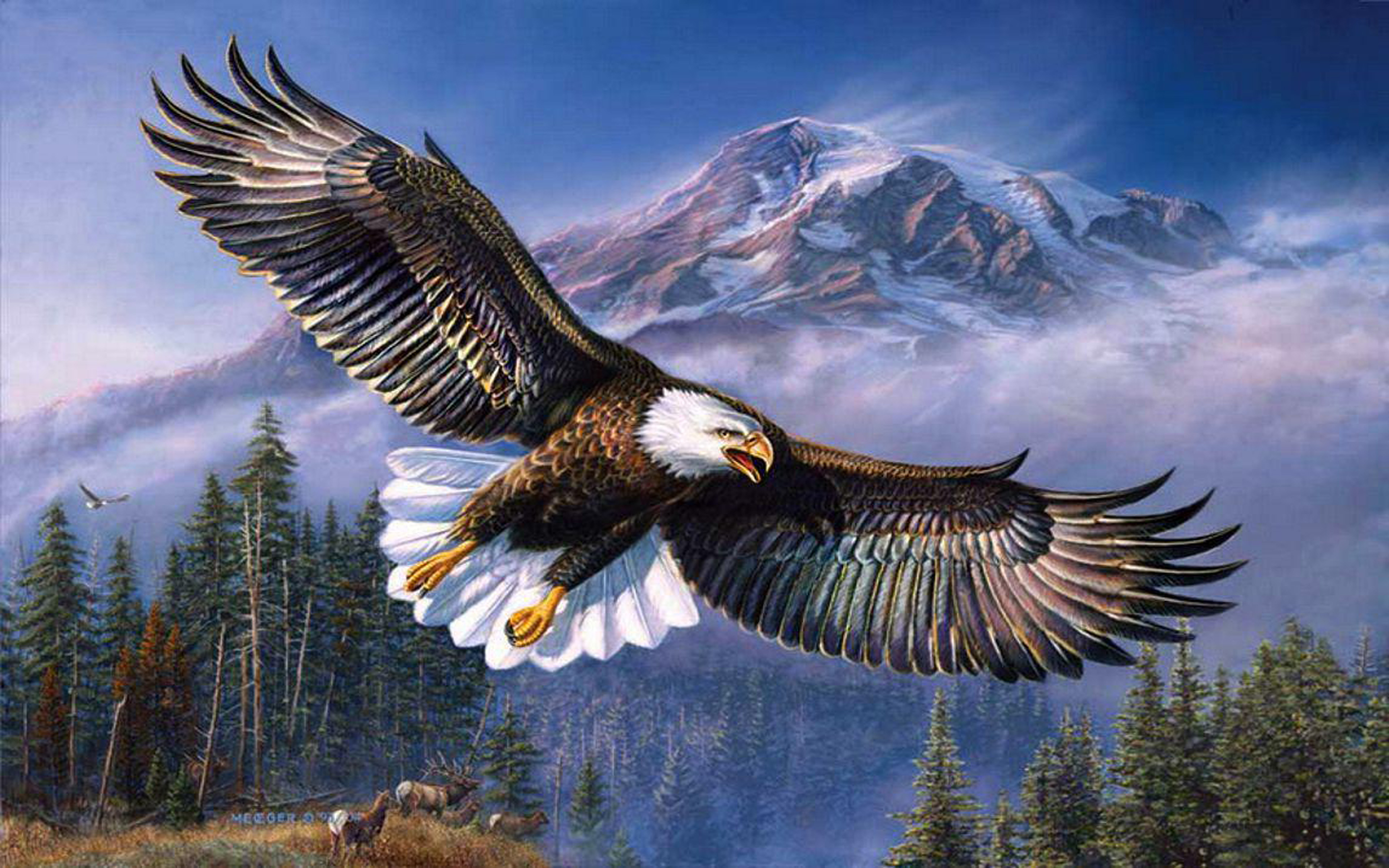 Native American Wallpaper Iphone Beautiful Background Bald Eagle In Flight Wings Spread Hd