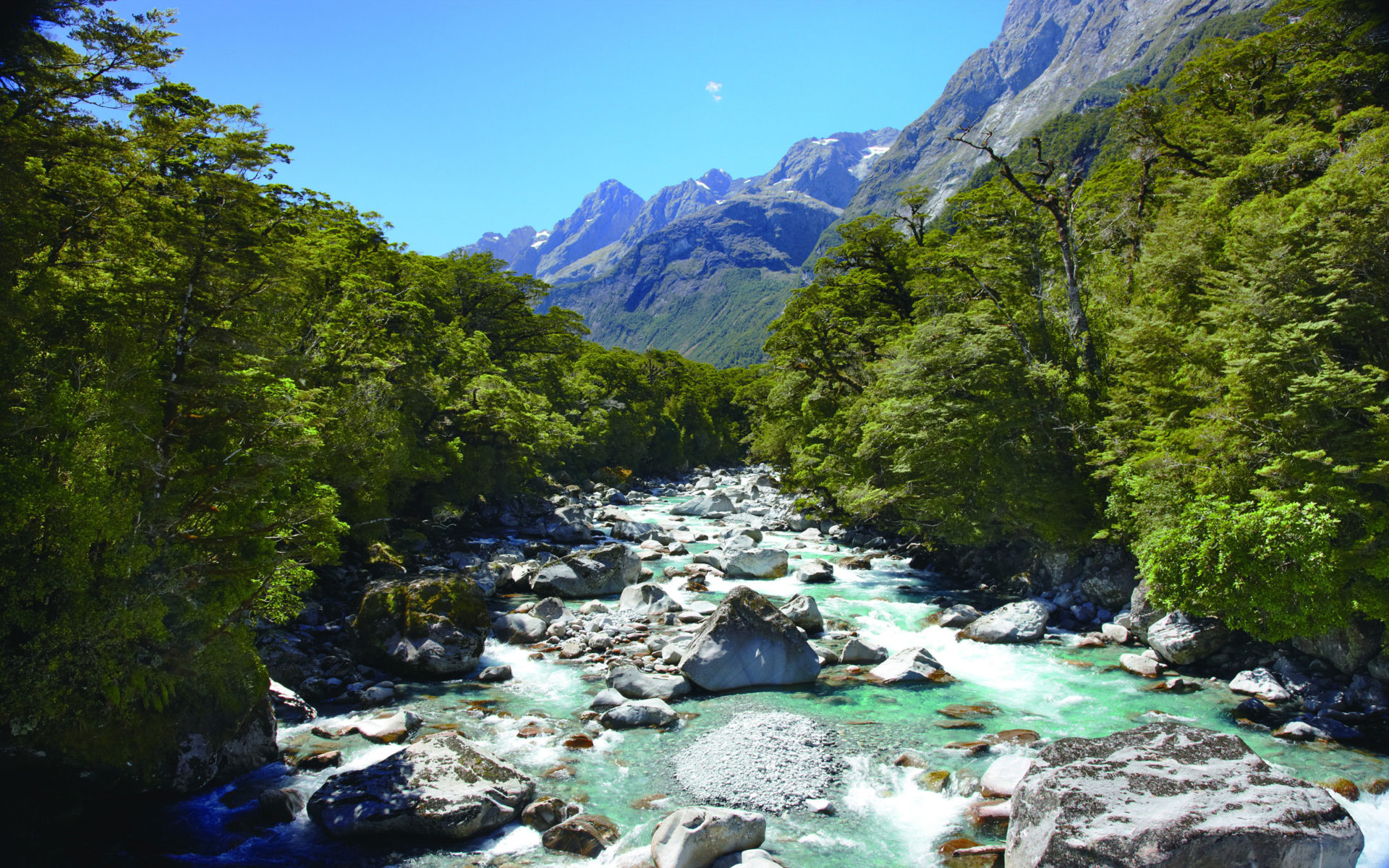 Fall Autumn Hd Wallpaper 1920x1080 Hollyford River Upper Tech New Zealand Wallpapers13 Com