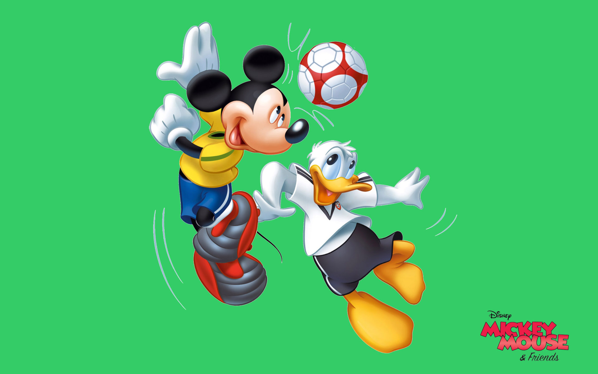 daisy duck and minnie mouse free cartoon wallpaper hd for desktop 2560x1600 wallpapers13 com