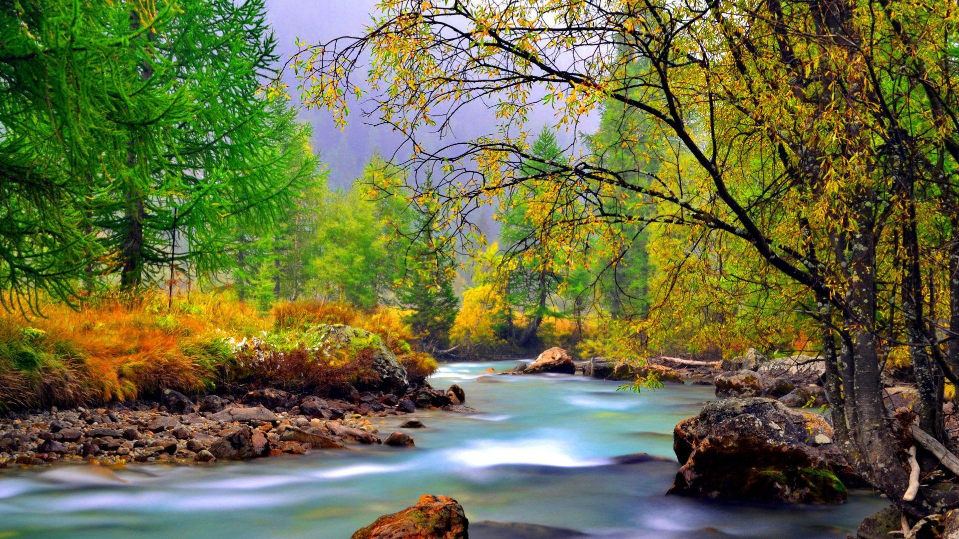 Animated Wallpaper For Tablet Mountain River With Rocks Rocks Yellowed Grass Evergreen