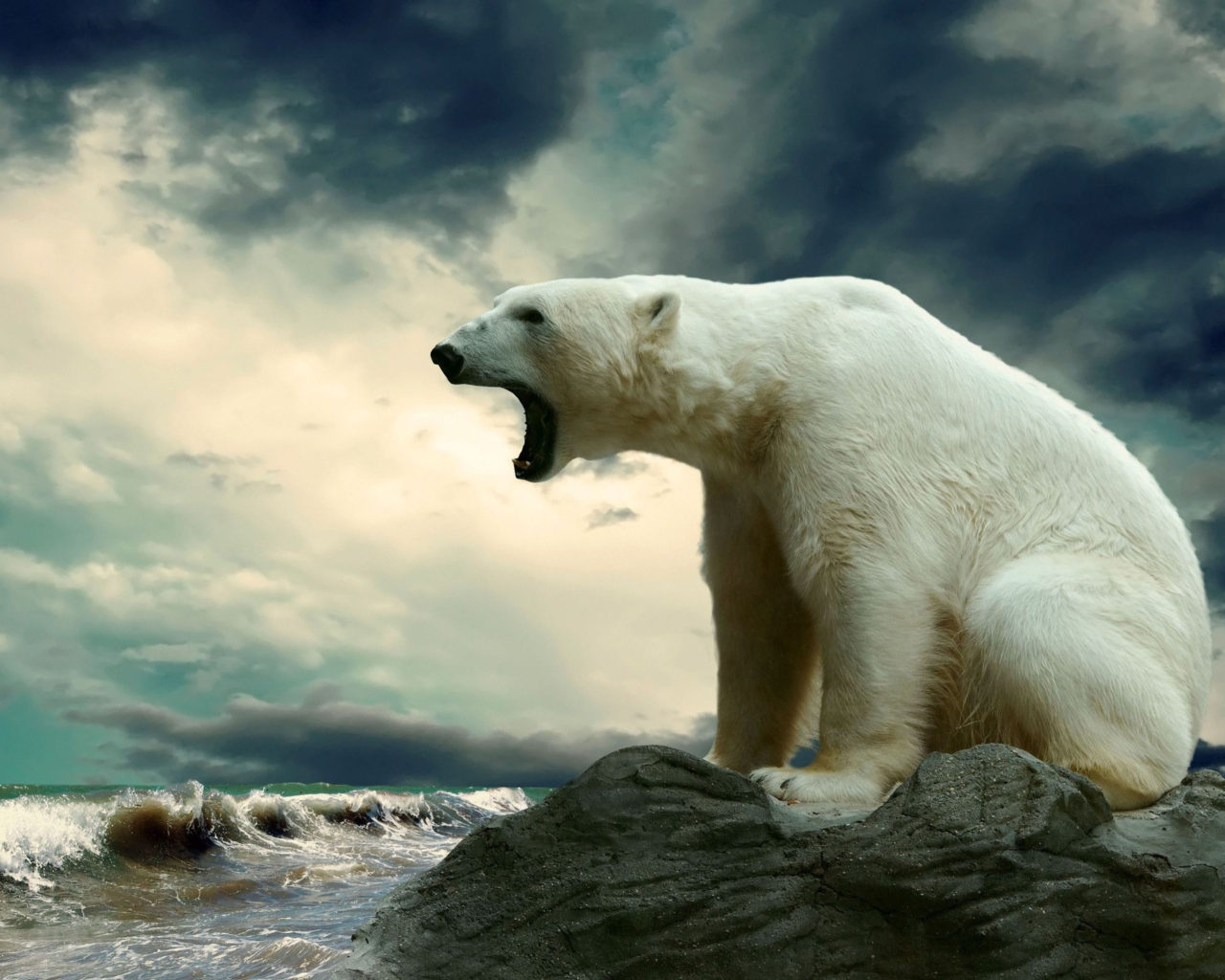 Fire And Water Hd Wallpapers Polar Bear Sea Ice Snow Dark Clouds Open Mouth Hd