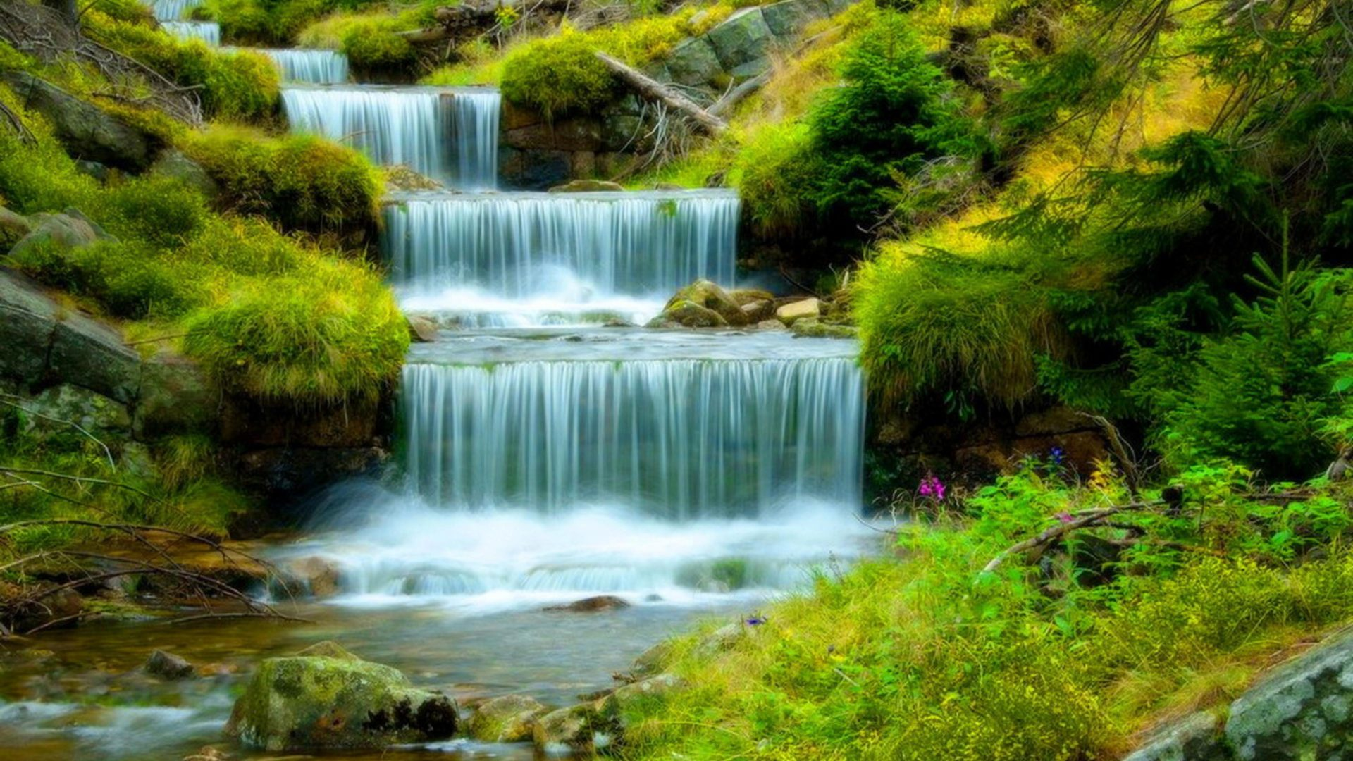 Fall Wallpaper Hd Iphone River With Cascading Waterfall Water Stones Green Grass
