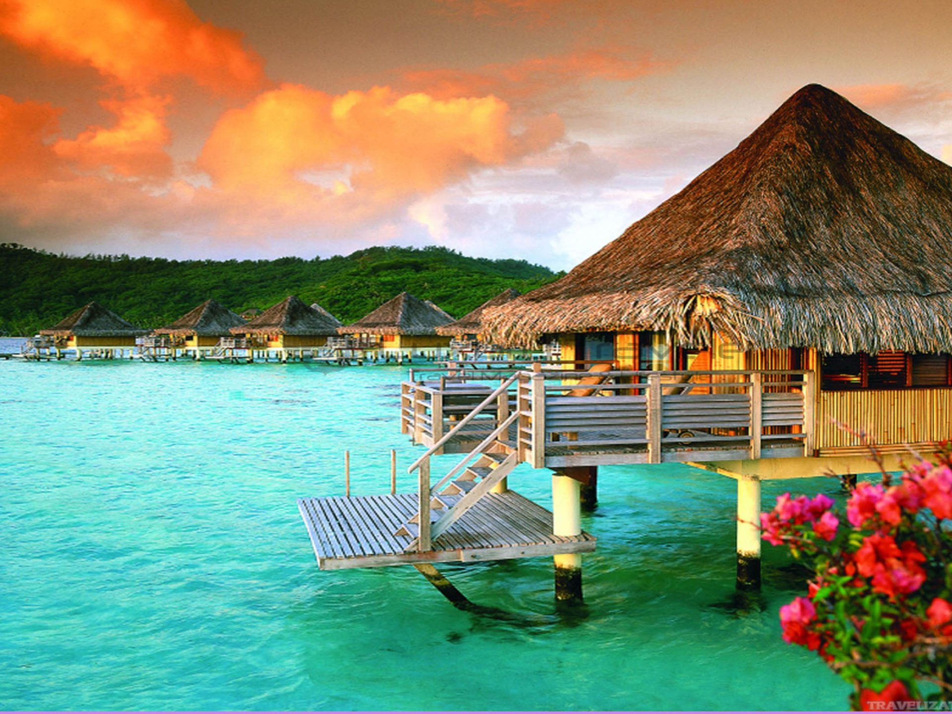 Hd Girl Wallpaper For Android Tahiti St Regis Bora Bora French Polynesia Luxury