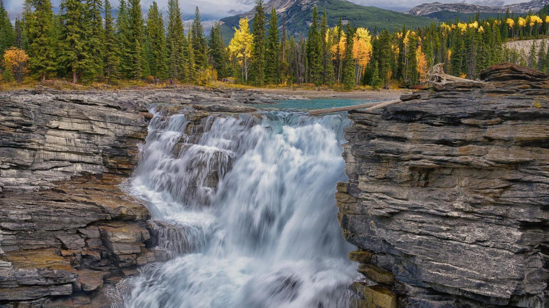 Tazmania Wallpaper Iphone Athabasca Falls In Jasper National Park On The Upper