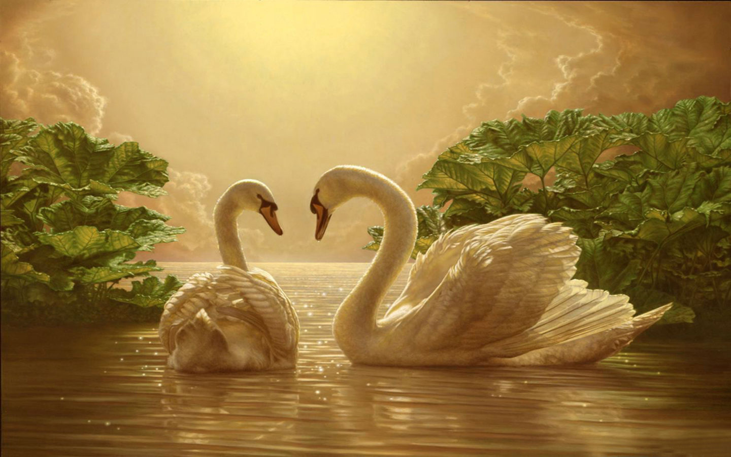 Stunning Black Wallpapers Beautiful Love Swan Two Romance Movie Wallpapers 2880 215 1800