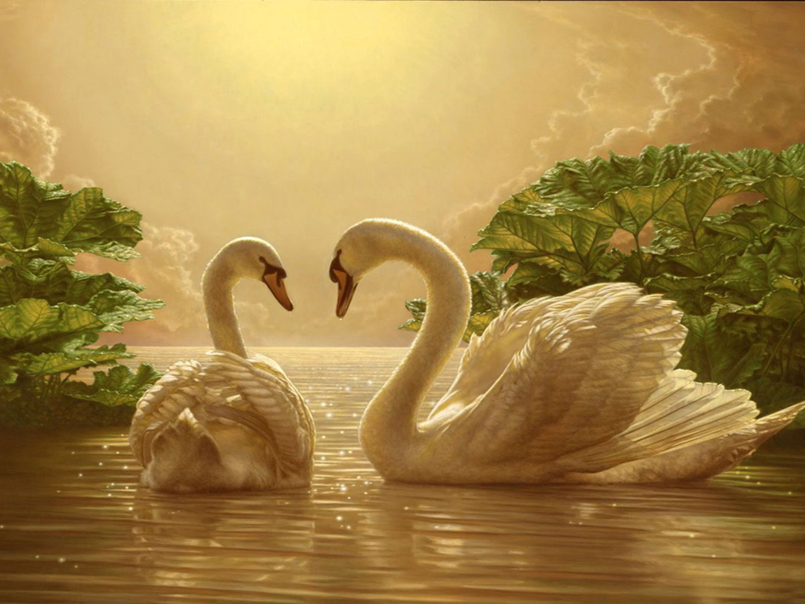 Cars The Movie Christmas Wallpaper Beautiful Love Swan Two Romance Movie Wallpapers 2880 215 1800