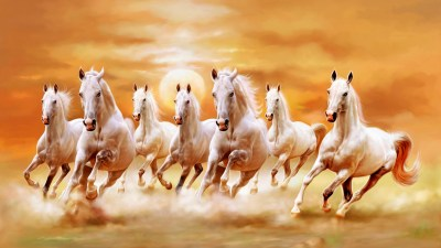 Beautiful White Horses Galloping Orange Sunset Sky Ultra Hd Wallpaper : Wallpapers13.com