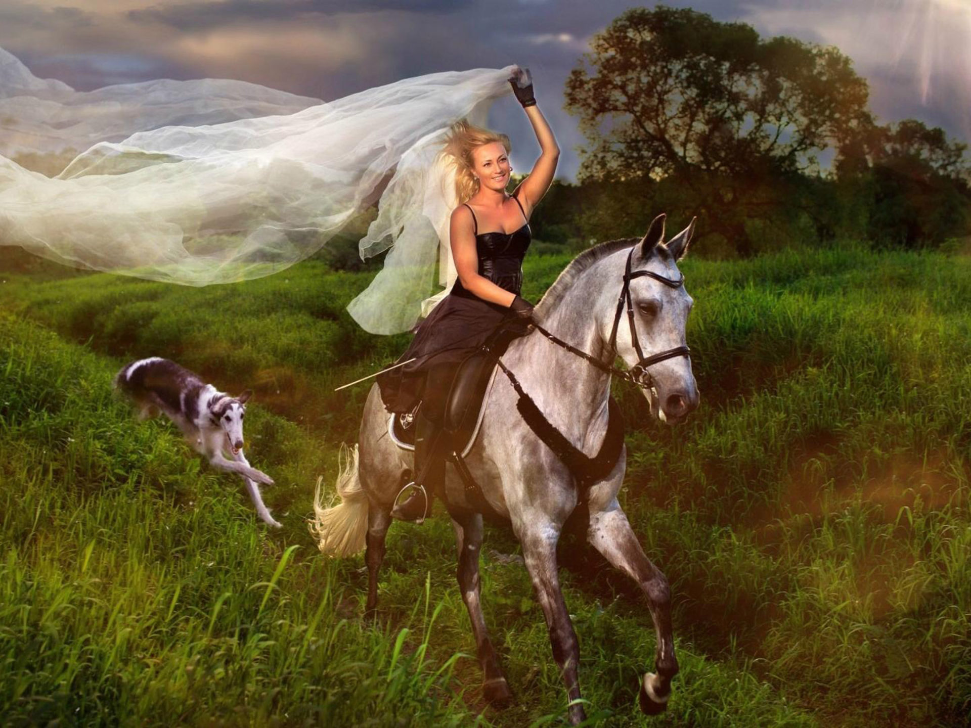 Girl Playing In Water Wallpaper Blue Girl Jockey And White Horse Hair Veil Field With