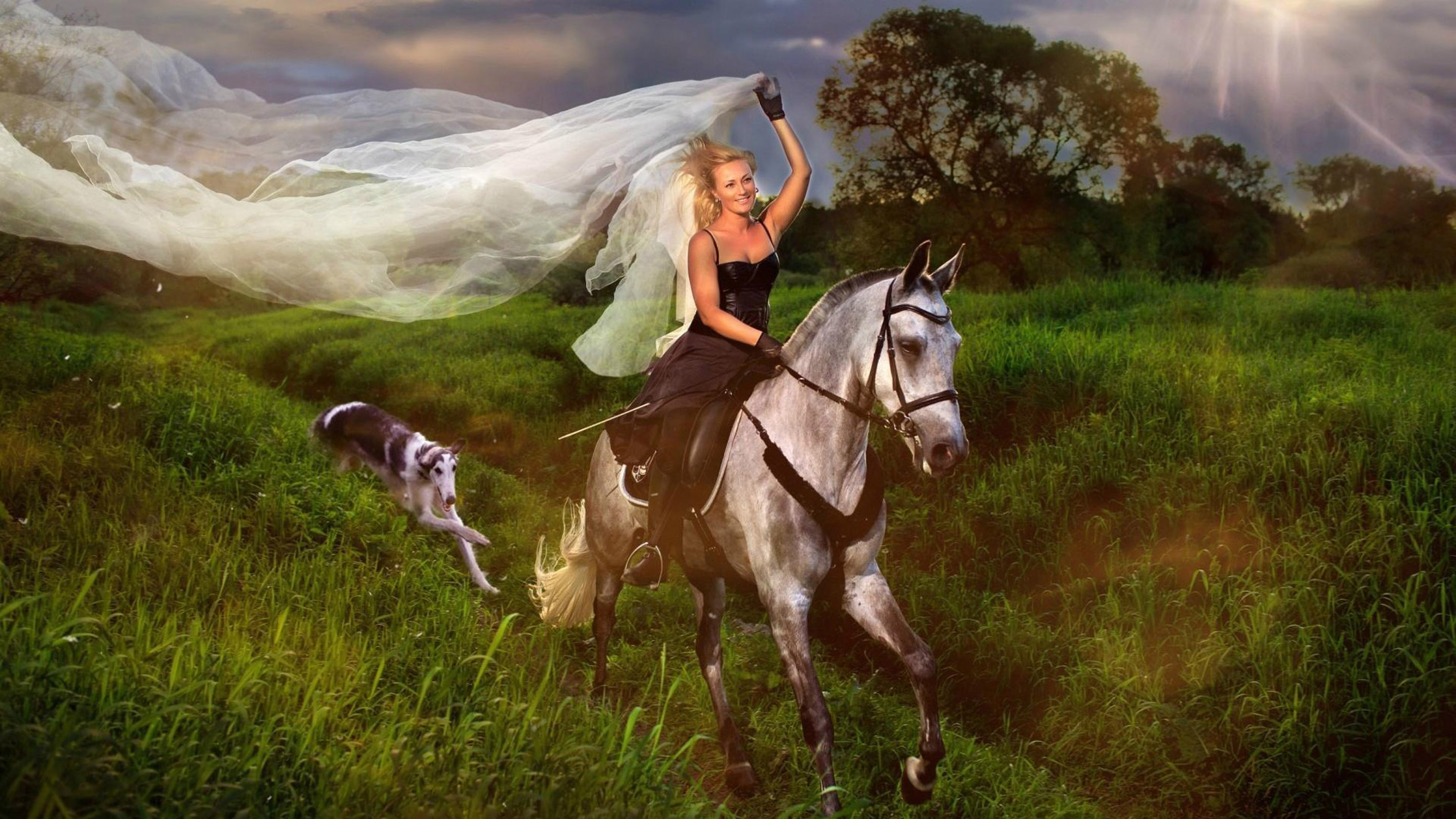 American Beautiful Girl Hd Wallpaper Blue Girl Jockey And White Horse Hair Veil Field With