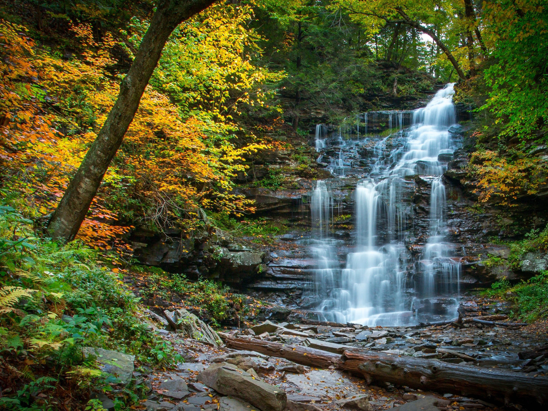 Fall Trees Desktop Wallpaper Cascading Waterfall In Fall River Forest Yellow Leaves
