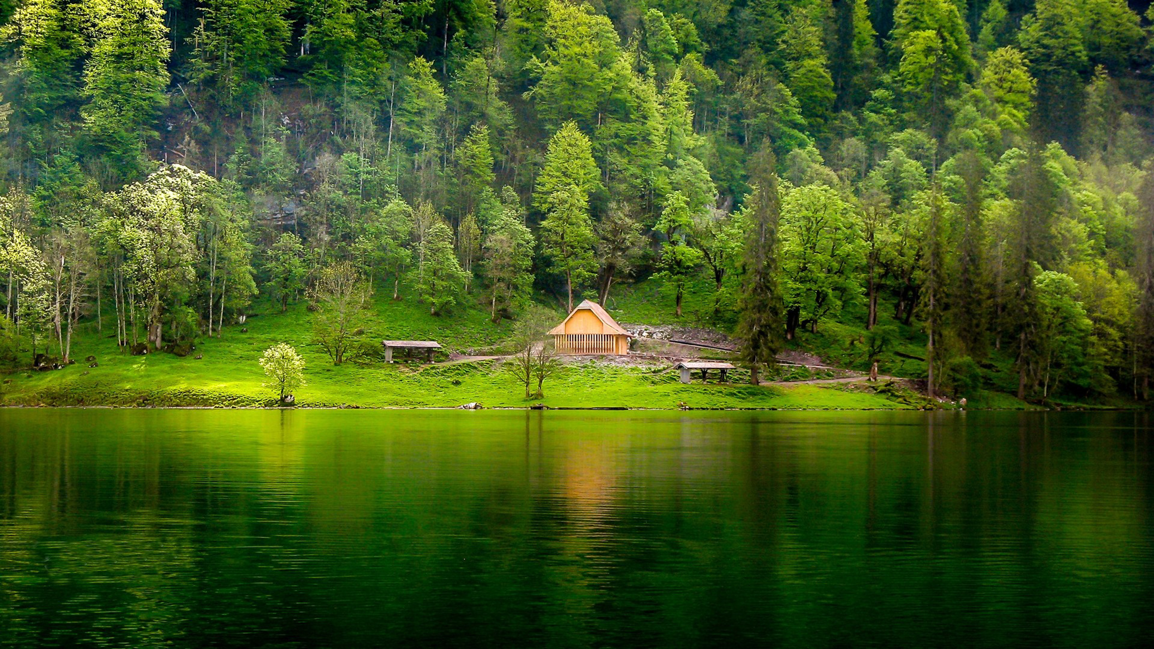 Hd Wallpapers For Laptop 15 6 Inch Screen Green Lake Wooden House Pine Forest Meadow Hd Desktop