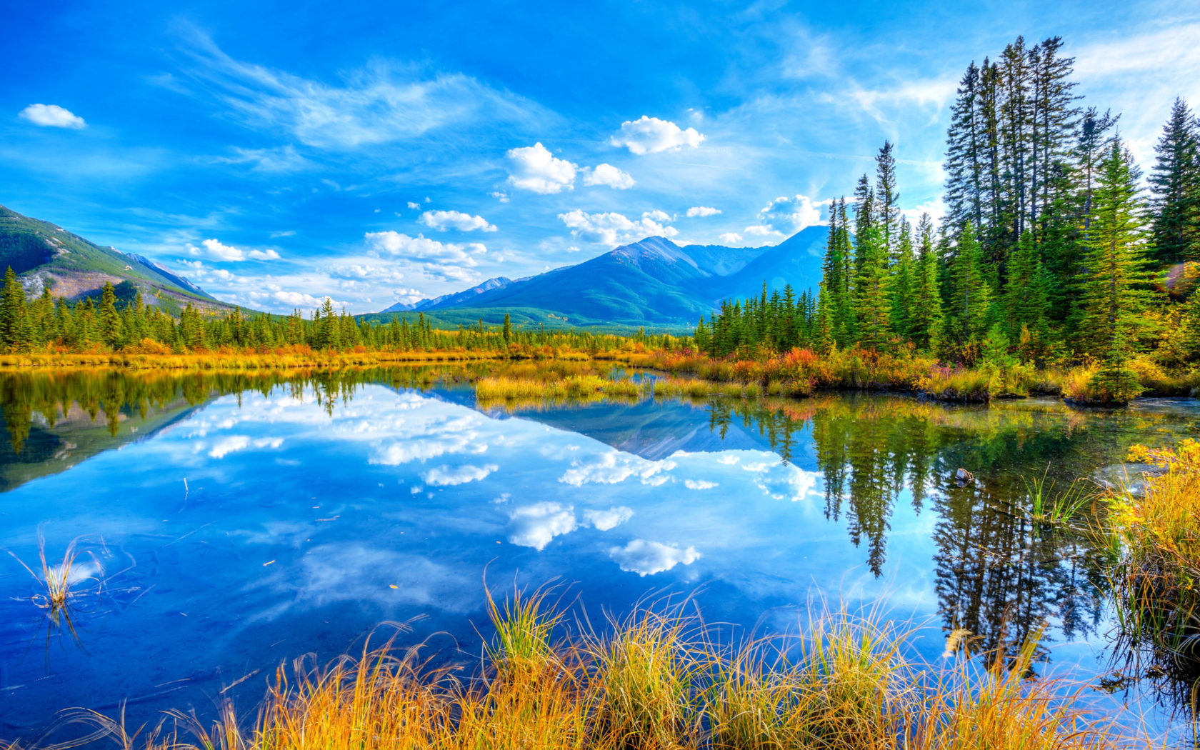 Fall Season Wallpaper Free Lake And Yellow Grass Pine Trees Reflecting The Blue Sky