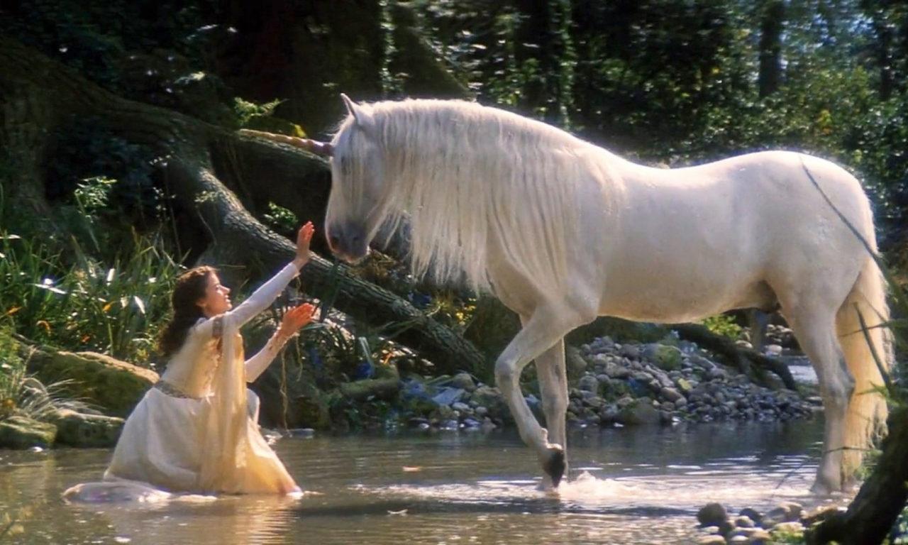 Fantasy Beautiful Girl Wallpaper Legends Of The Unicorn White Horse Girl And Horse Unicorn