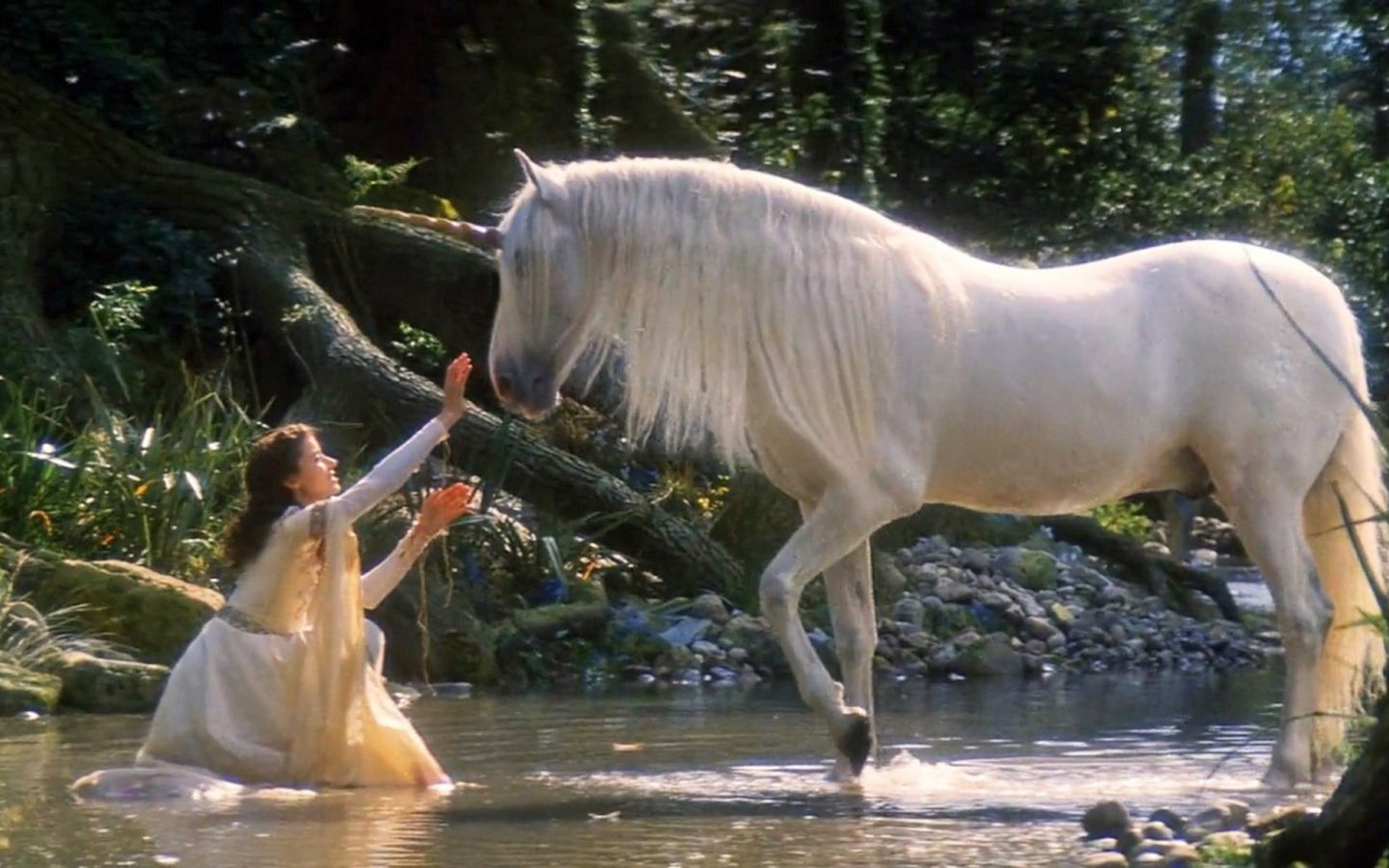 Animated Wallpaper Android Tablet Legends Of The Unicorn White Horse Girl And Horse Unicorn