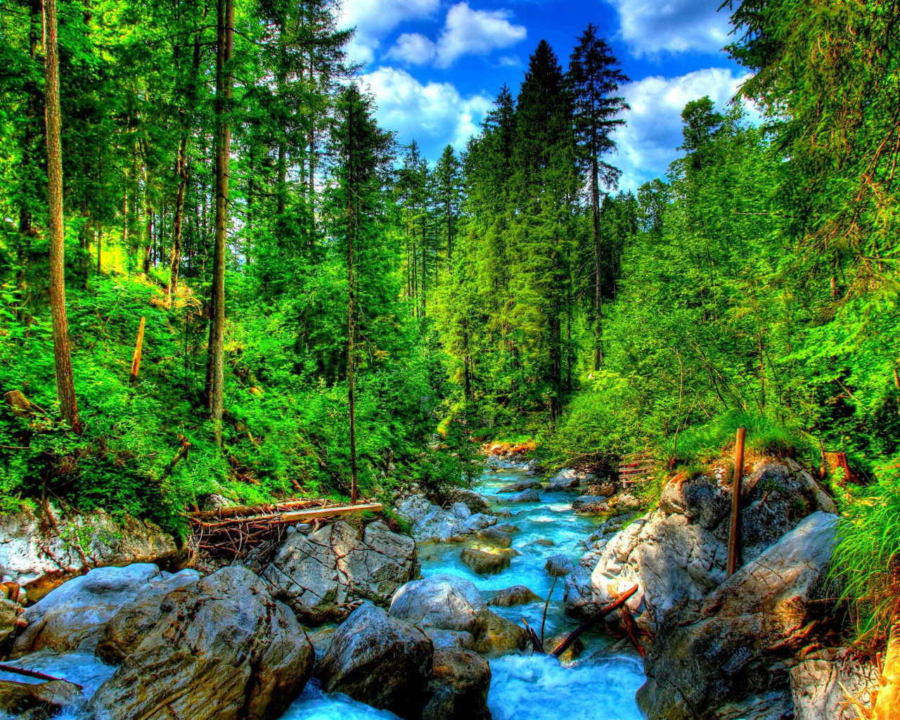 Free Fall Wallpapers For Ipad Mountain River Green Pine Forest Rocks And Green Grass