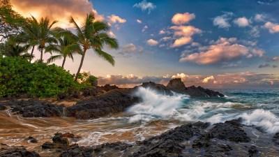 Tropical Landscape Ocean Palm Coast Rock Band The Sky Clouds Maui Hawaii Pacific 3840x2160 ...