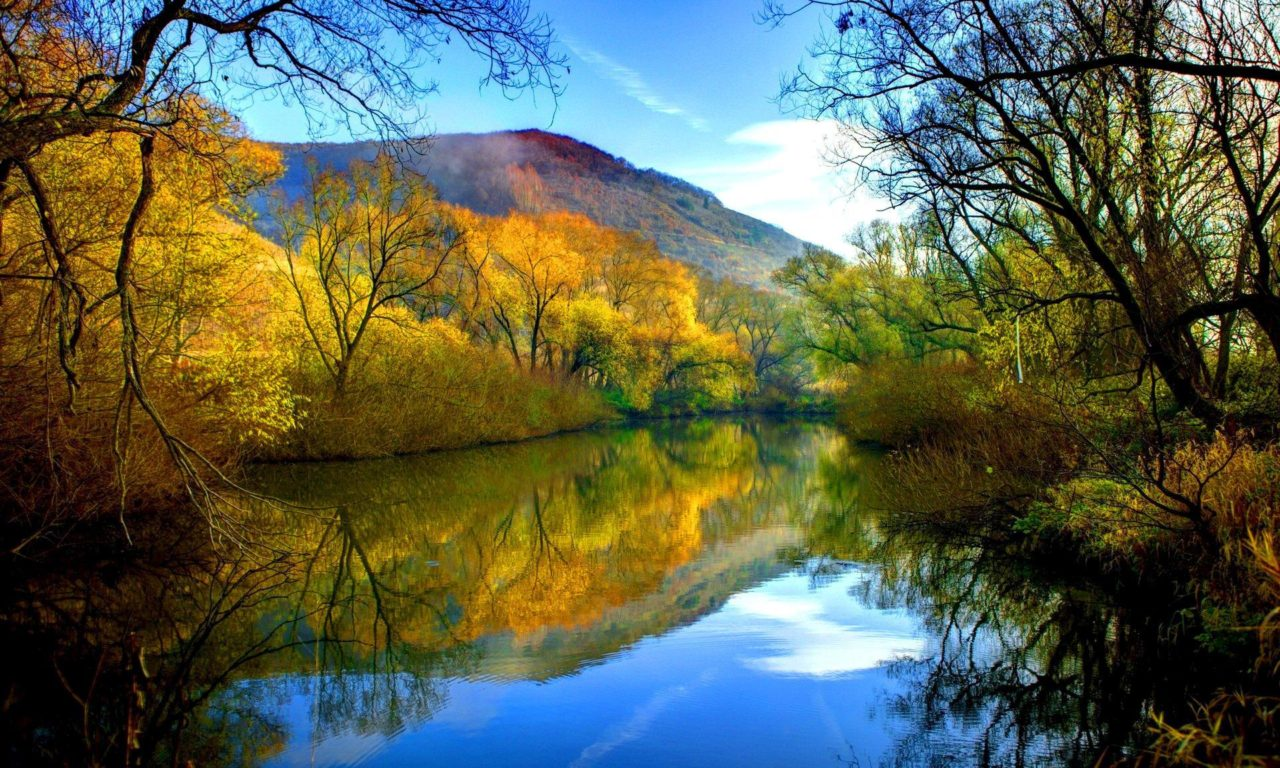 Free Fall Images Desktop Wallpaper Fall River Peaceful Water Willow With Yellow Leaves Blue
