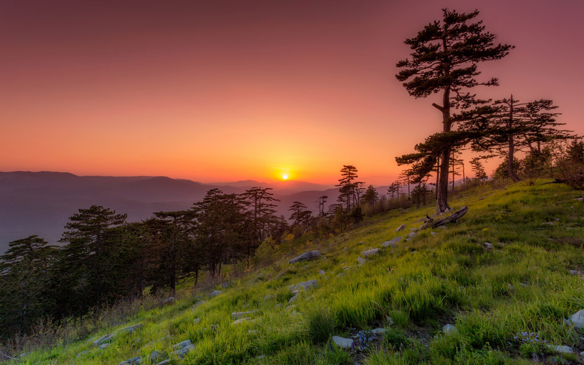 Oregon Wallpaper For Iphone Sunset In Spring May Montenegro Desktop Hd Wallpaper