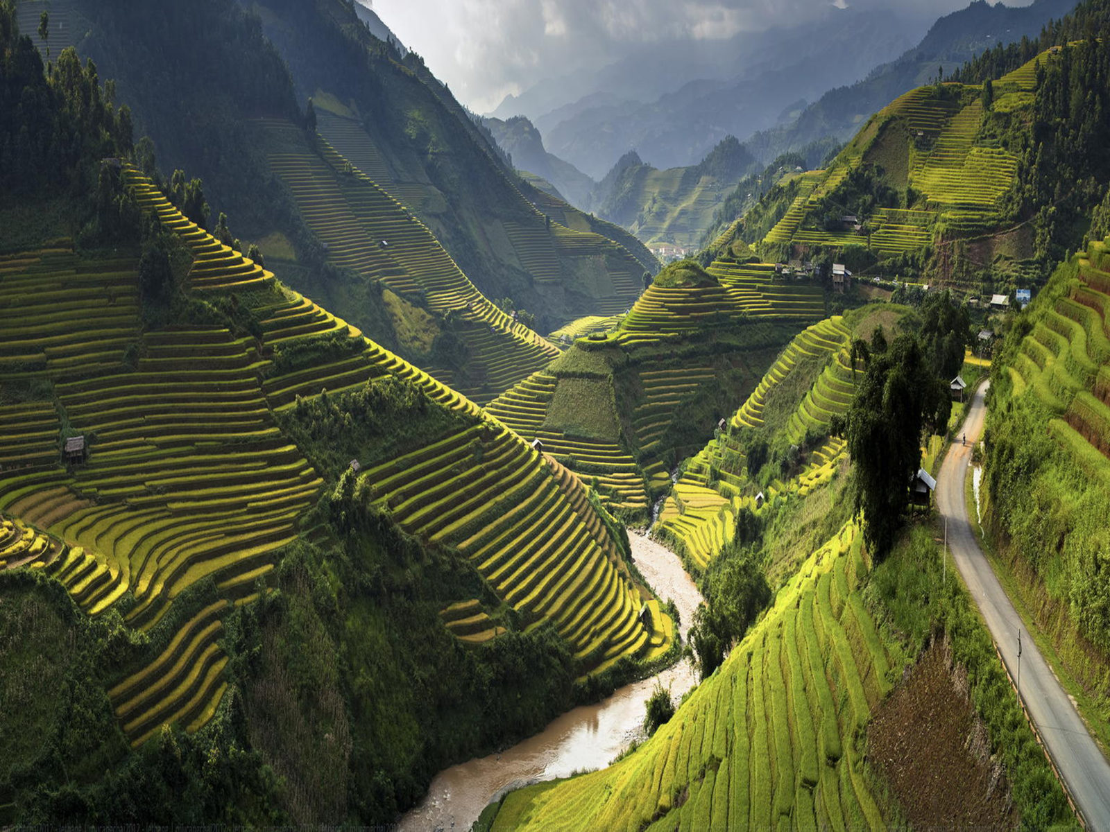 Art Car Wallpaper Landscape Terasasti Fields With Rice Mu Cang Chai District