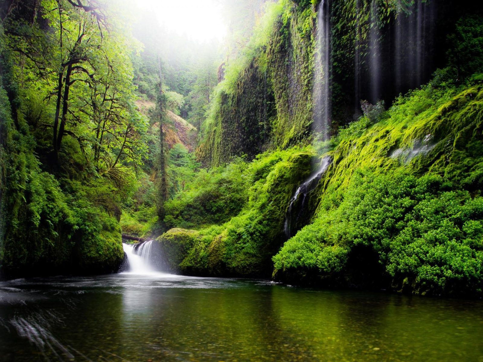 1366x768 Fall Wallpapers Spring Landscape Waterfall In Oregon Usa Nature River