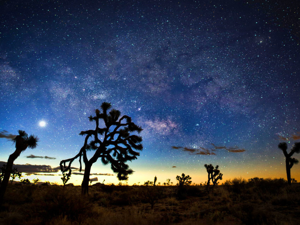 Free Landscape Wallpaper Hd Milky Way At Night Desert Landscapes With Rocks And Cactus