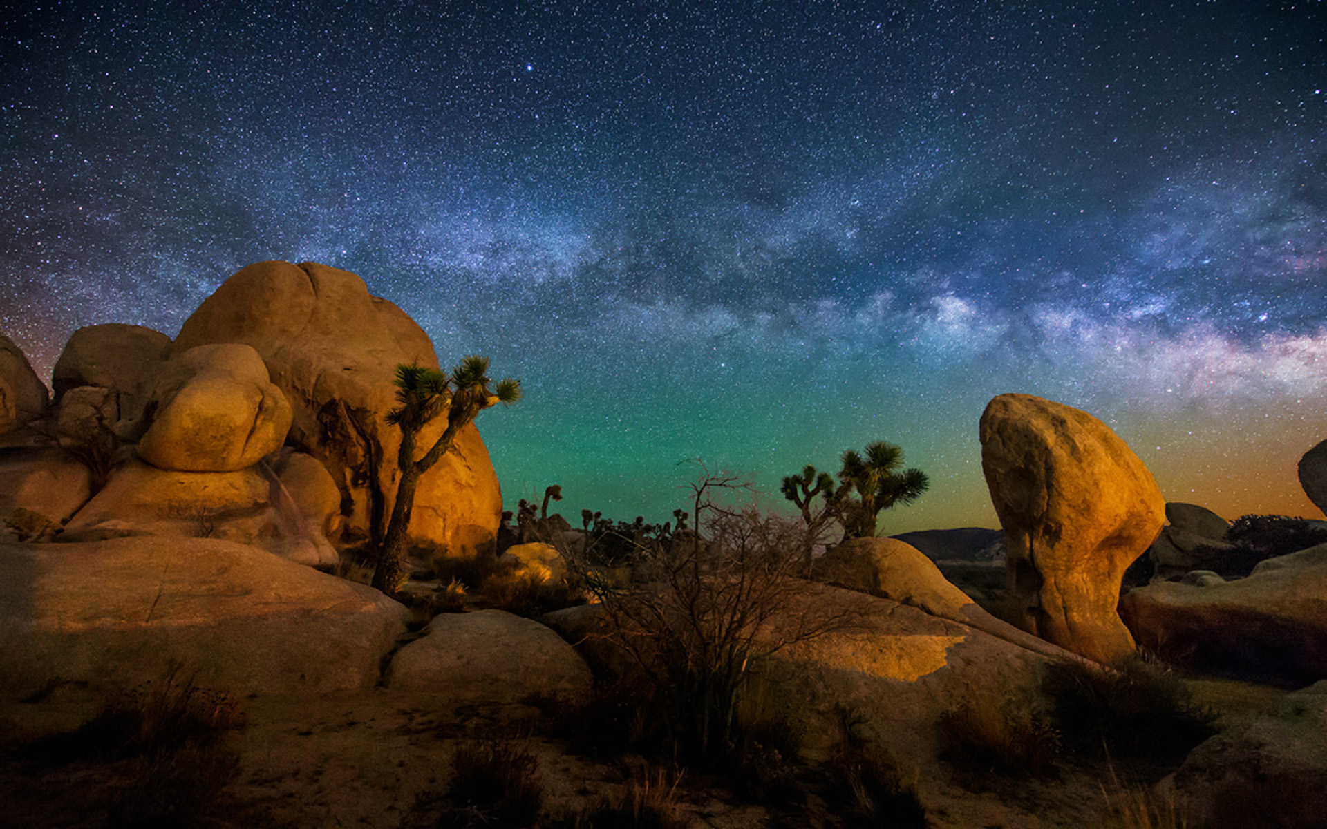 Wallpaper Hd 1080p Free Download Cars Starry Sky Joshua Tree National Park Usa Hd Wallpaper For