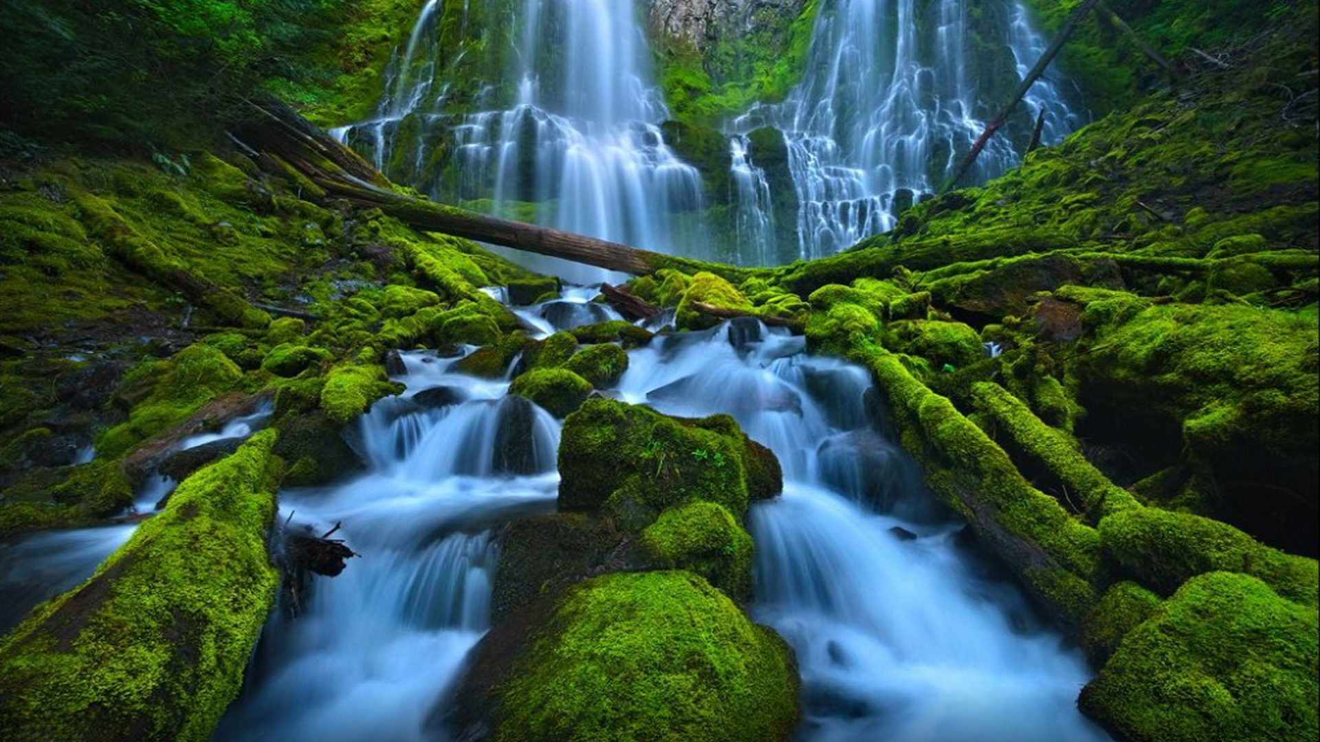 Free Animated Wallpaper For Android Tablet Beautiful Waterfall Rocks Green Moss Proxy Falls Eugene