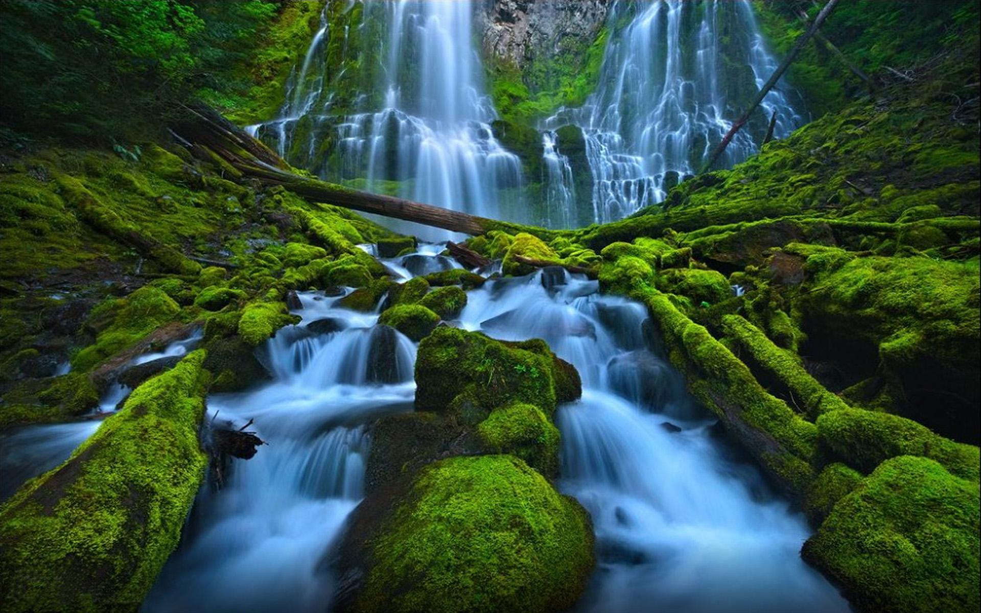 Iphone X Usa Wallpaper Beautiful Waterfall Rocks Green Moss Proxy Falls Eugene