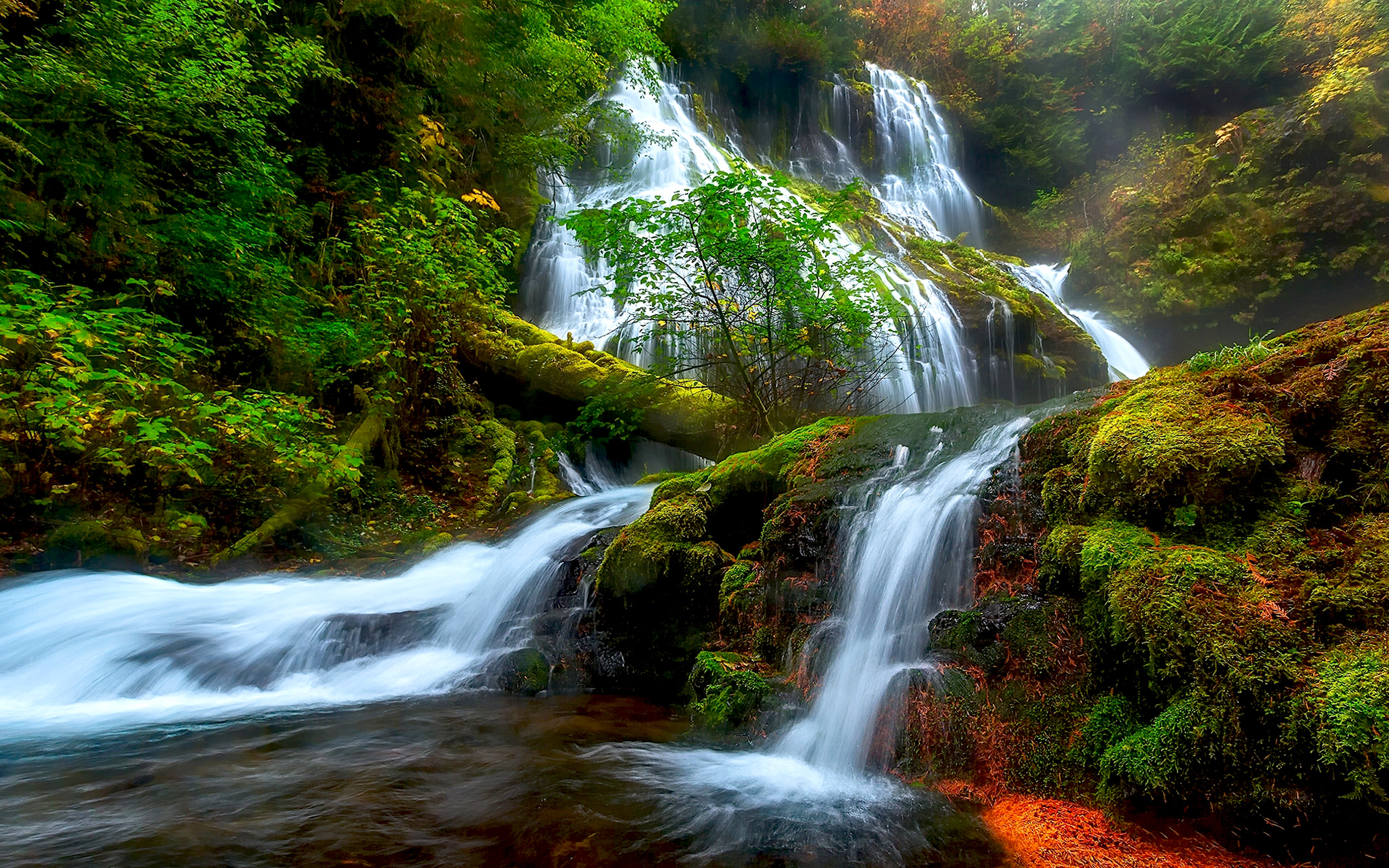 Free Fall Waterfall Desktop Wallpaper Natural Beauty Panther Creek Falls Columbia River District