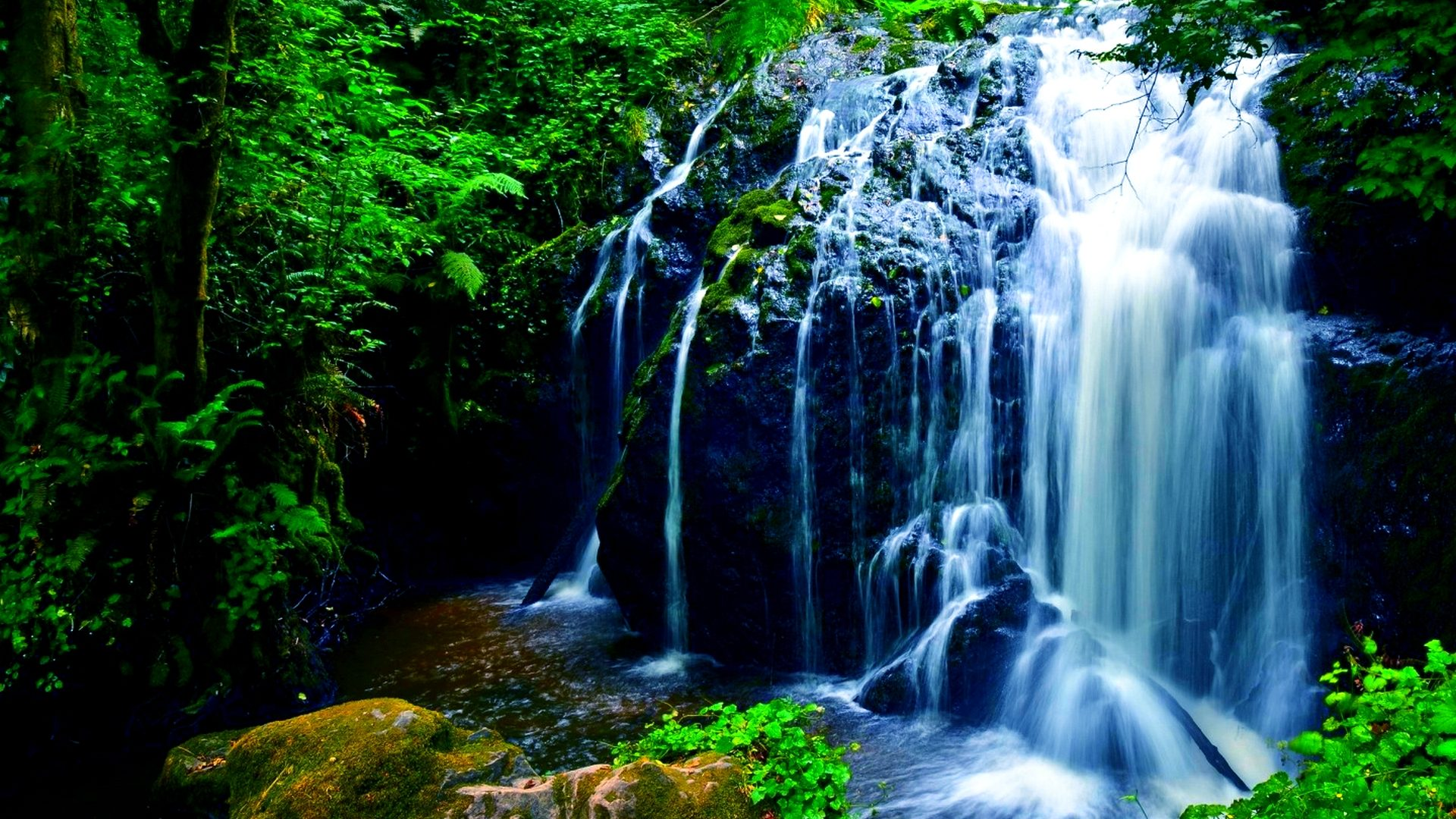 Moving Fall Wallpapers For Windows 10 Nature Beautiful Waterfall Green Noise Rock Fern Green