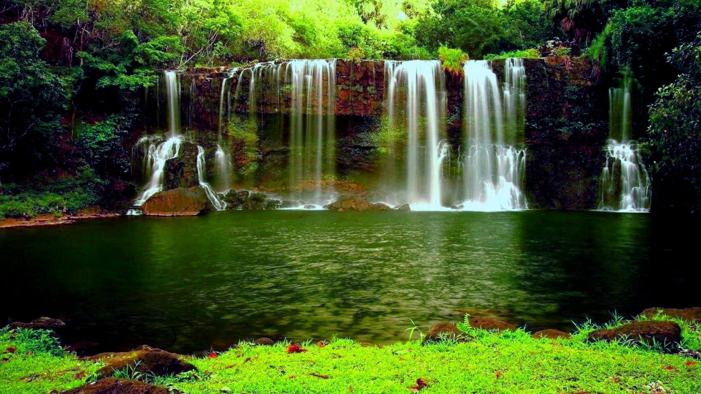 Falls Hd Wallpaper Free Download Waterfall In The Thick Green Forest River Pond Weed Hd