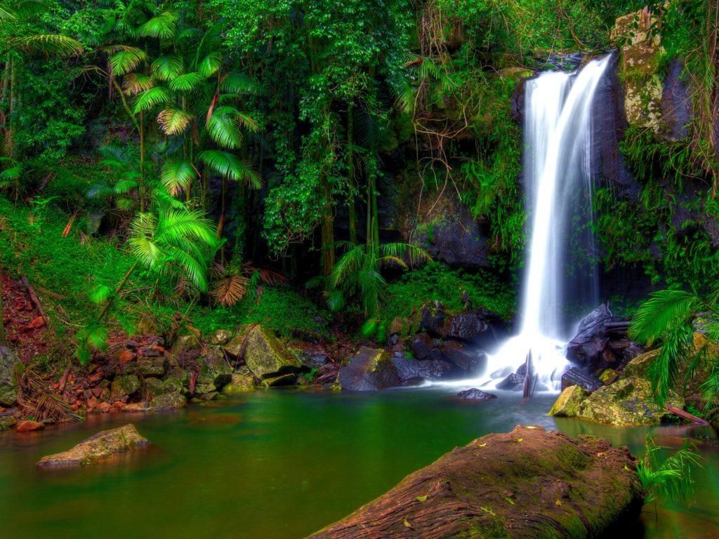 Water Fall Wallpaper Hd For Desktop Free Download Wonderful Tropical Waterfall Jungle Green Tropical