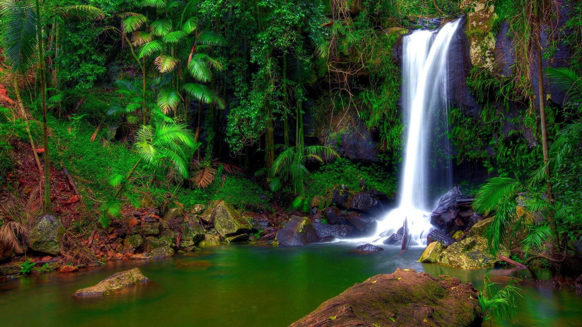 Niagara Falls Full Hd Wallpaper Wonderful Tropical Waterfall Jungle Green Tropical