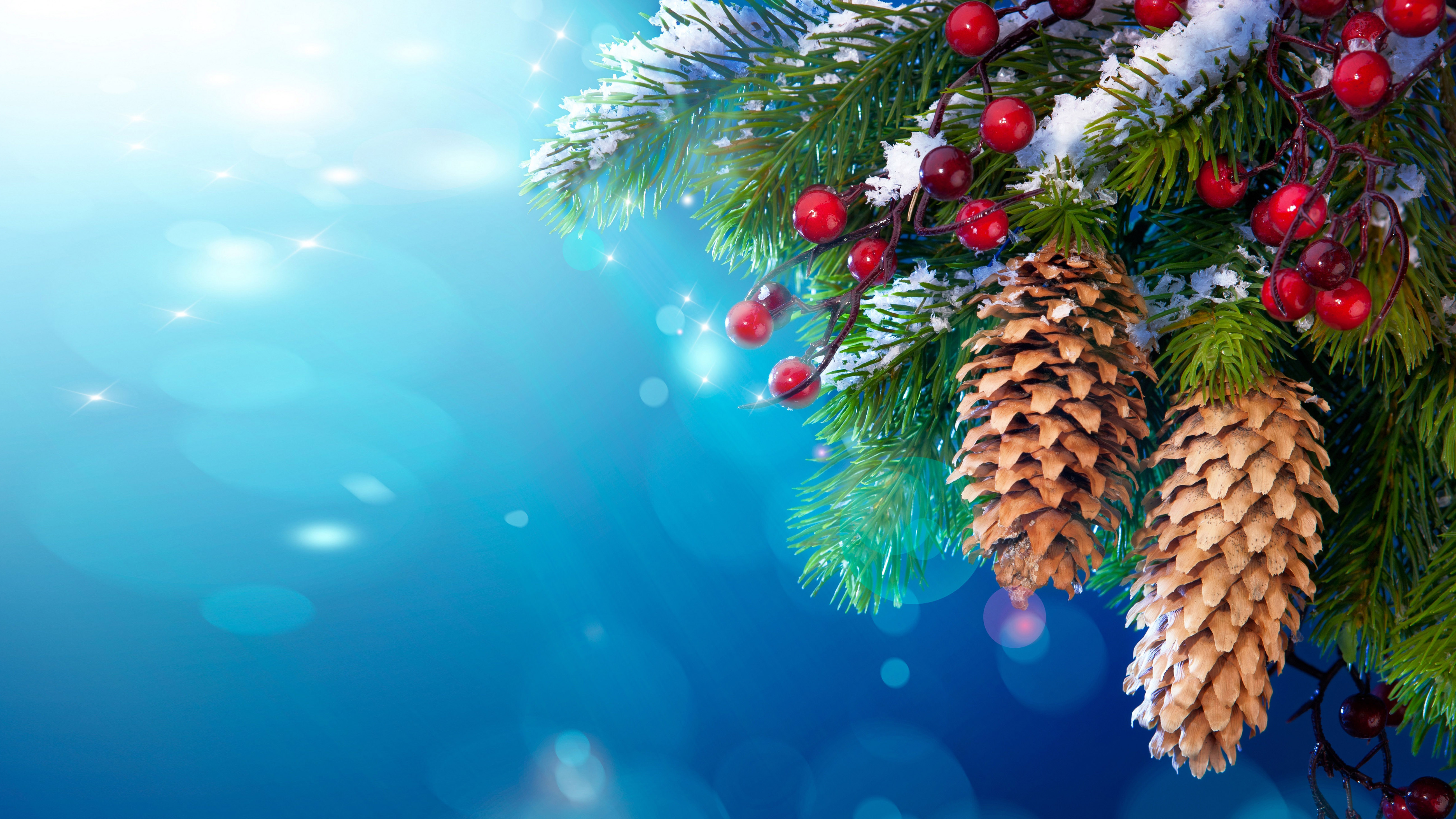 Hd Diwali Wallpapers Free New Year Christmas Pine Twigs And Berries Cones Snow