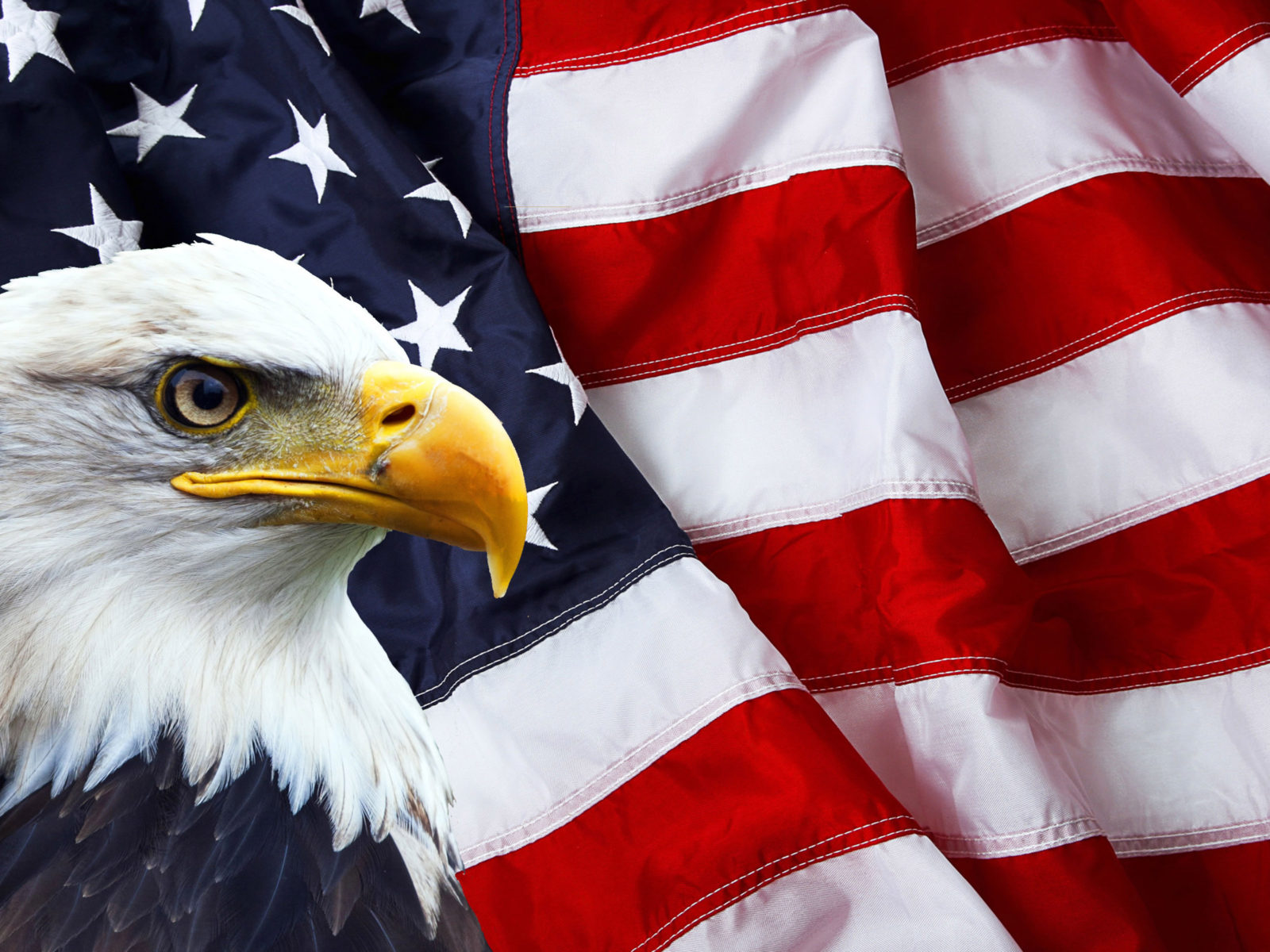 Computer Lock Screen Wallpapers Girls American Flag And Bald Eagle Photo Symbols Of North