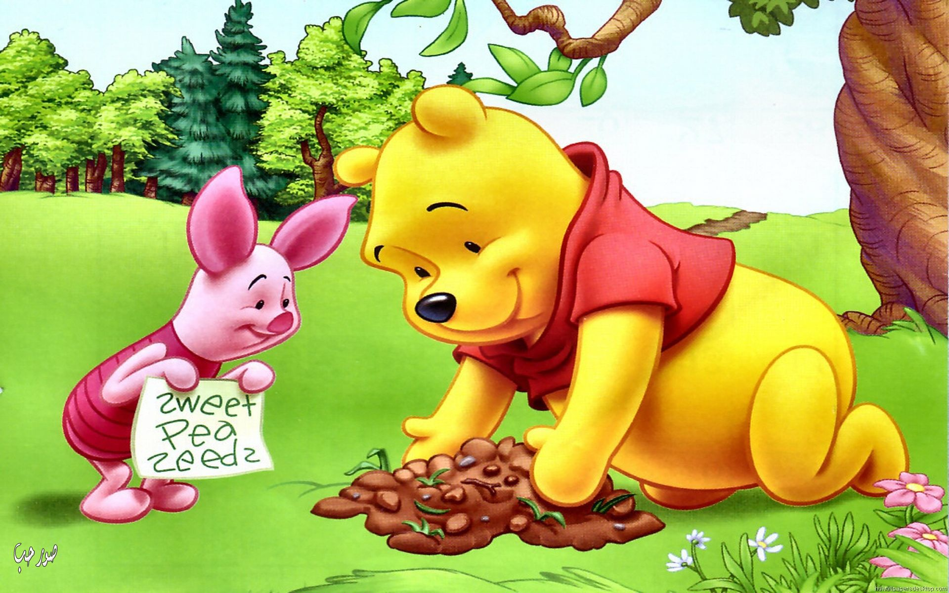 Piglet Wallpaper Iphone Piglet And Winnie The Pooh Planting Flowers Hd Wallpapers