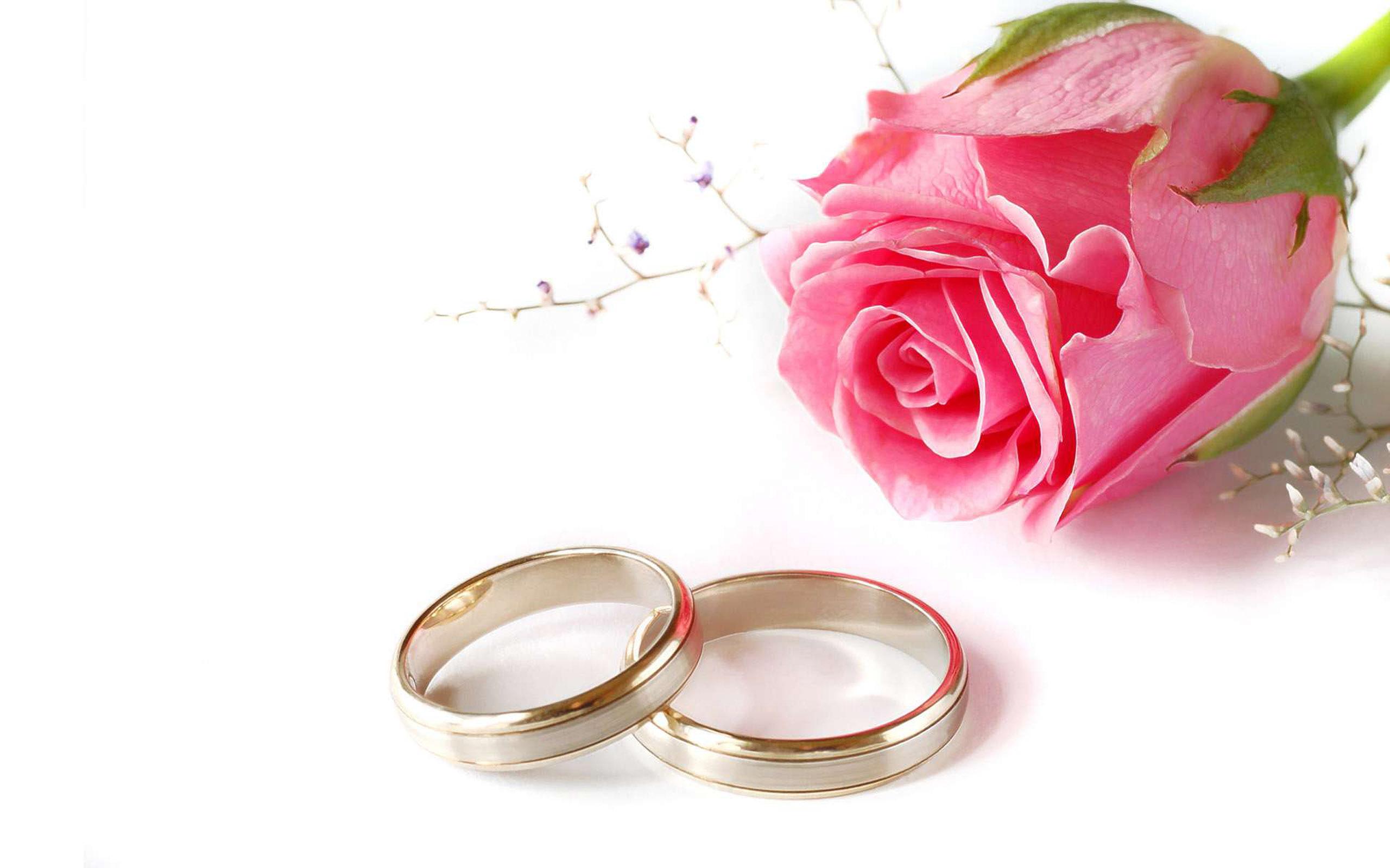 wedding flower wallpaper wedding ring flower wedding ring Wedding wedding ring