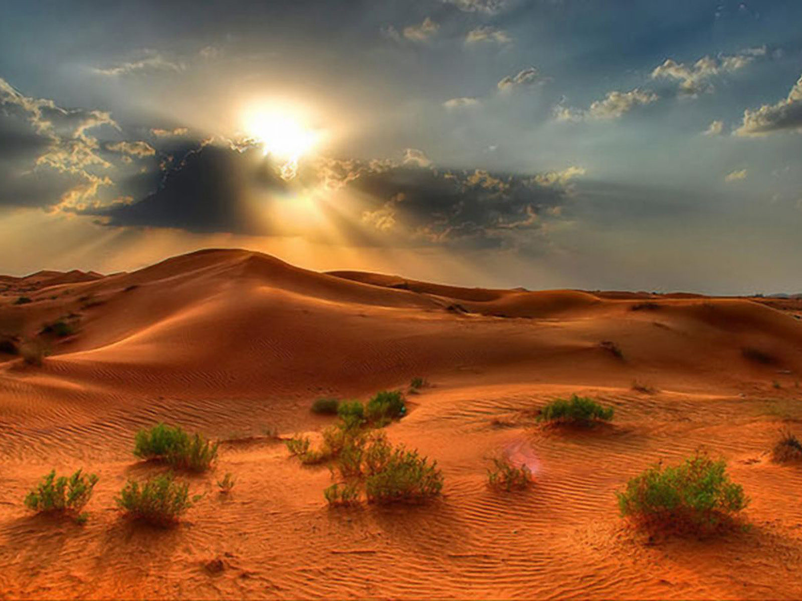 Beautiful Cars Wallpapers Free Download Desert Landscape Summer Sunset In The Desert Red Sand