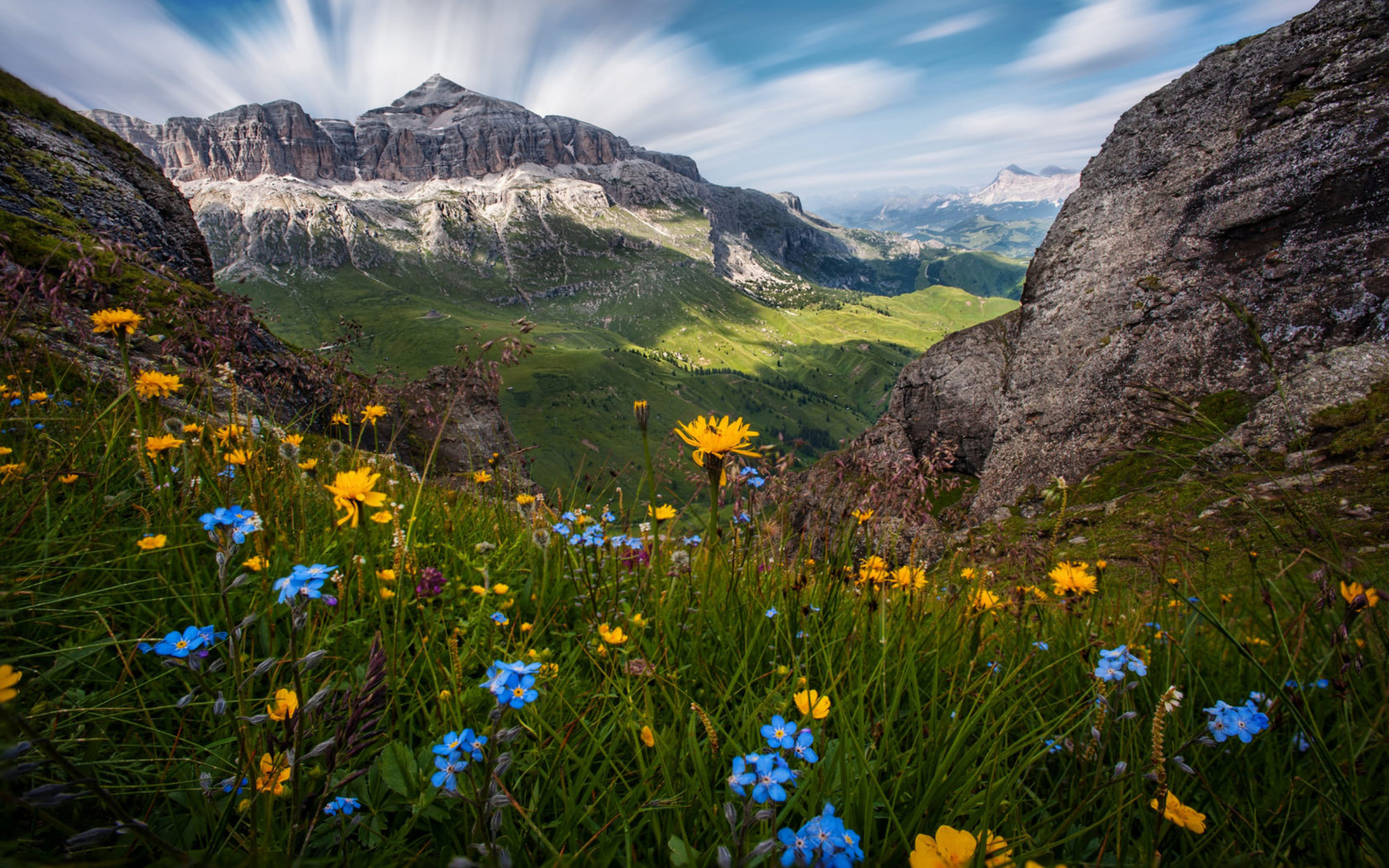 Wallpaper Desktop Background Cars Flowers Of The Dolomites Italy Nature Landscape Wallpaper