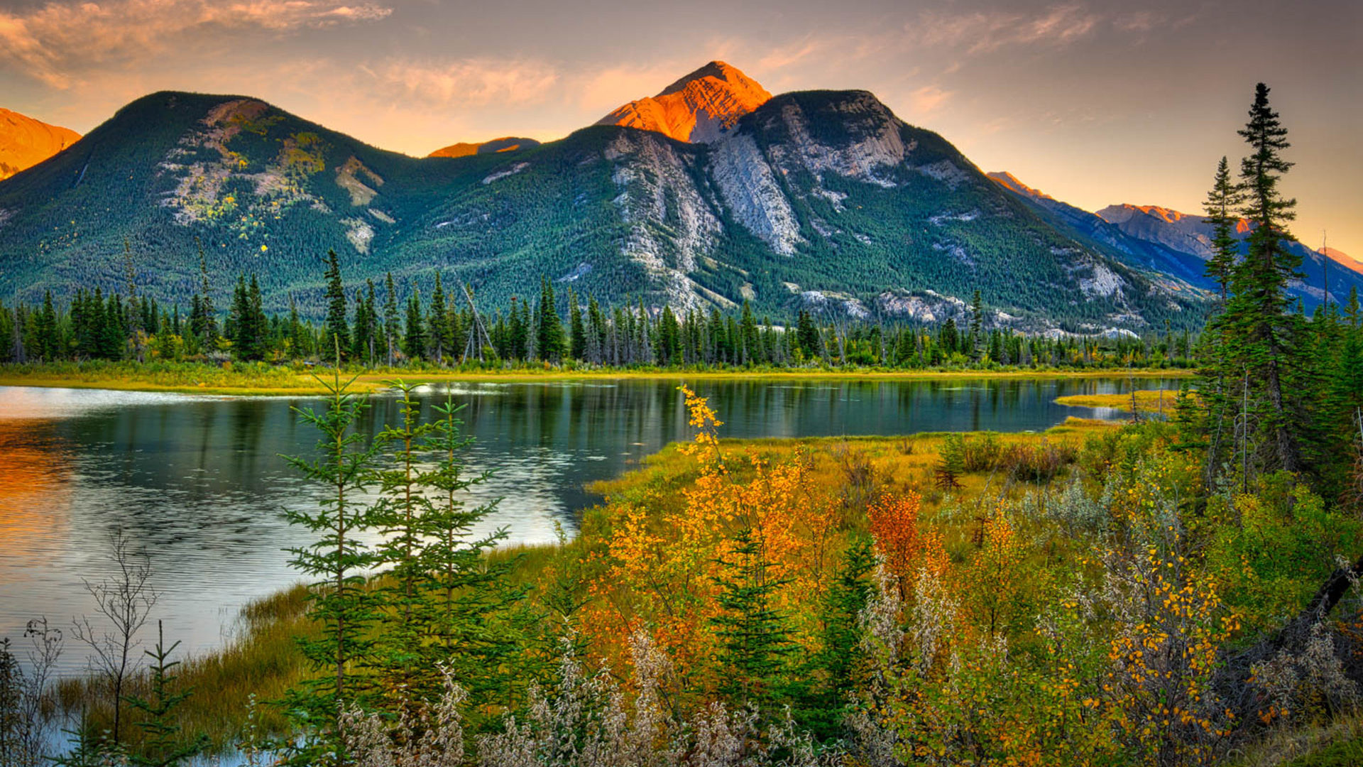 Hd Wallpapers Android Lock Screen Natural Beauties Canada Landscape Rocky Mountains Pine